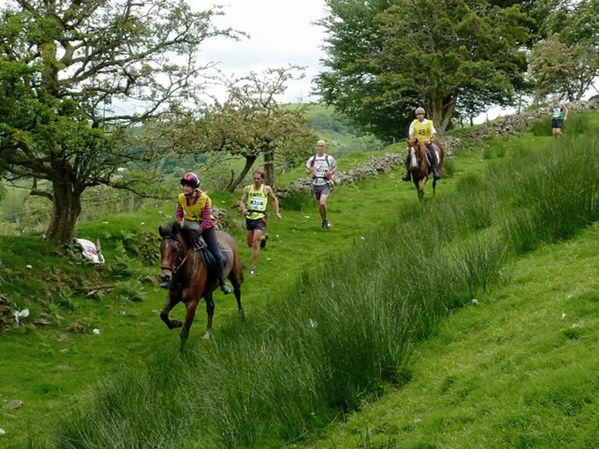 Man v Horse Marathon in Wales 2020 - Best Time