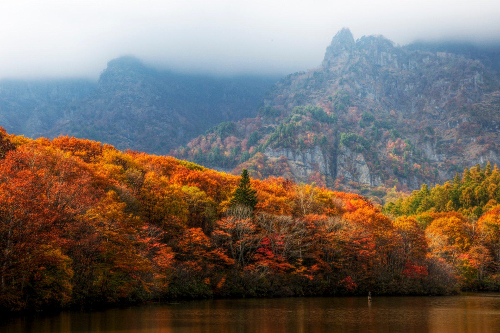Autumn in Japan - Best Season 2020