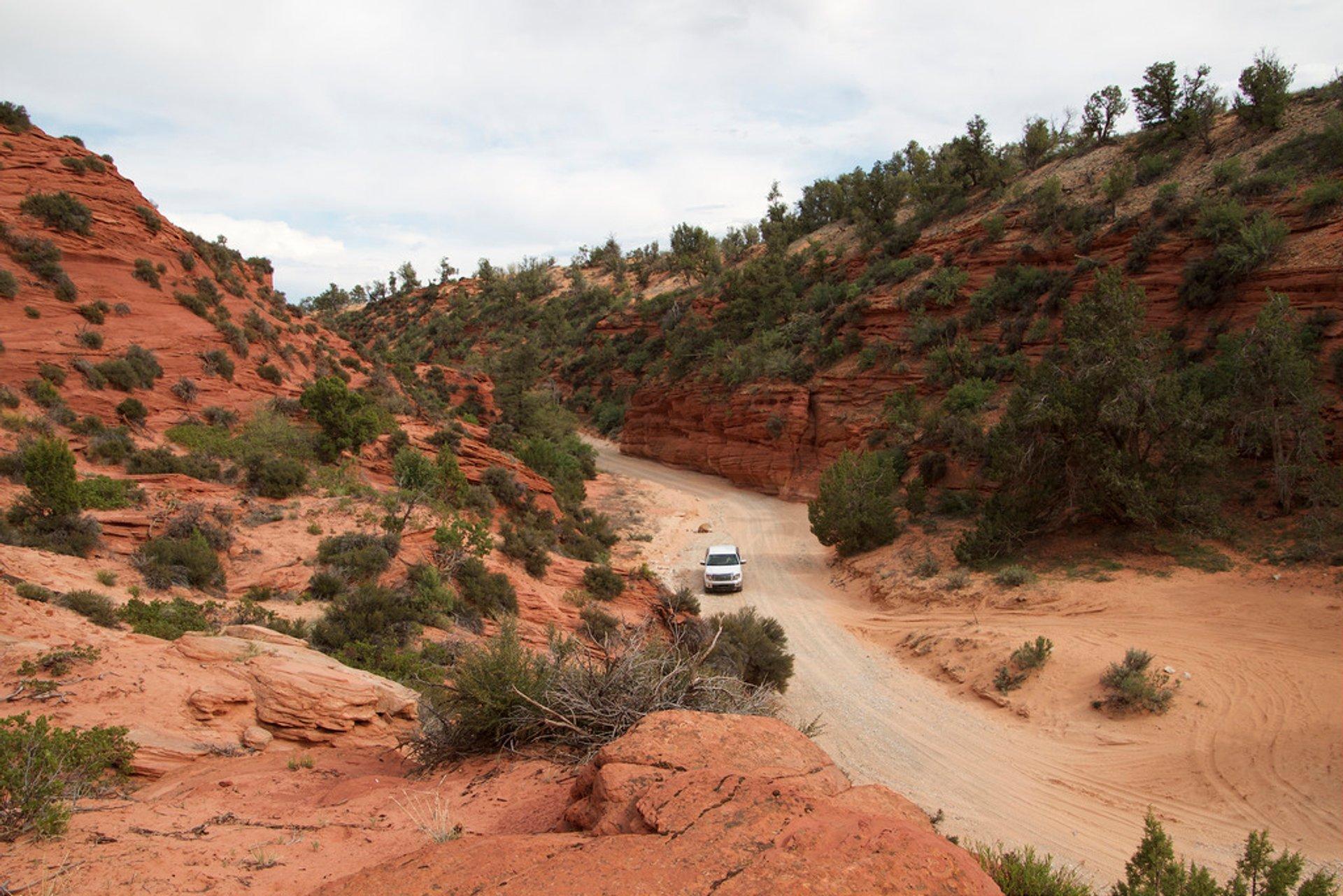 Red Canyon (Peek-a-Boo Canyon) in Utah - Best Season 2020