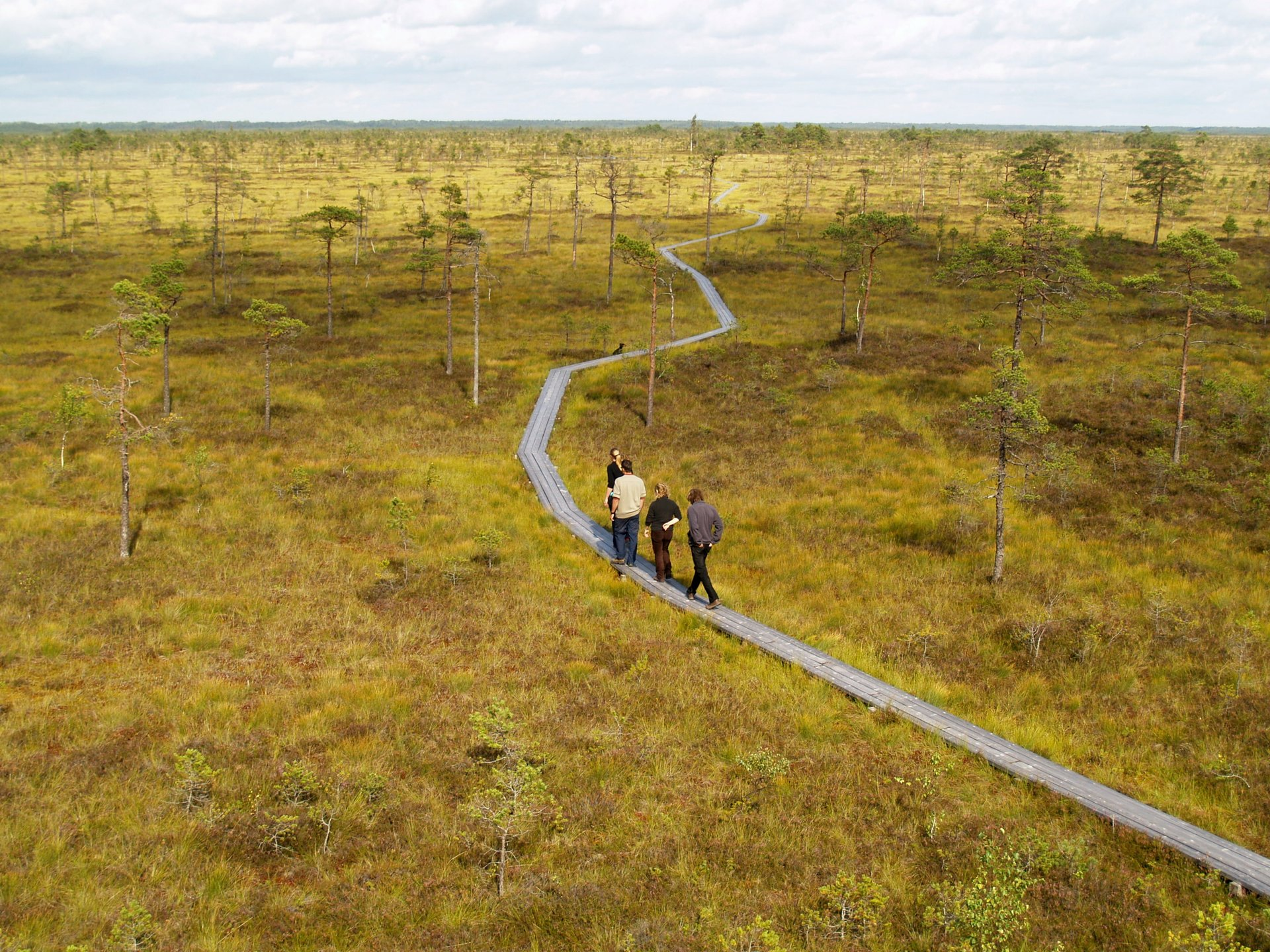 Ingatsi Nature Trail in Soomaa National Park 2020