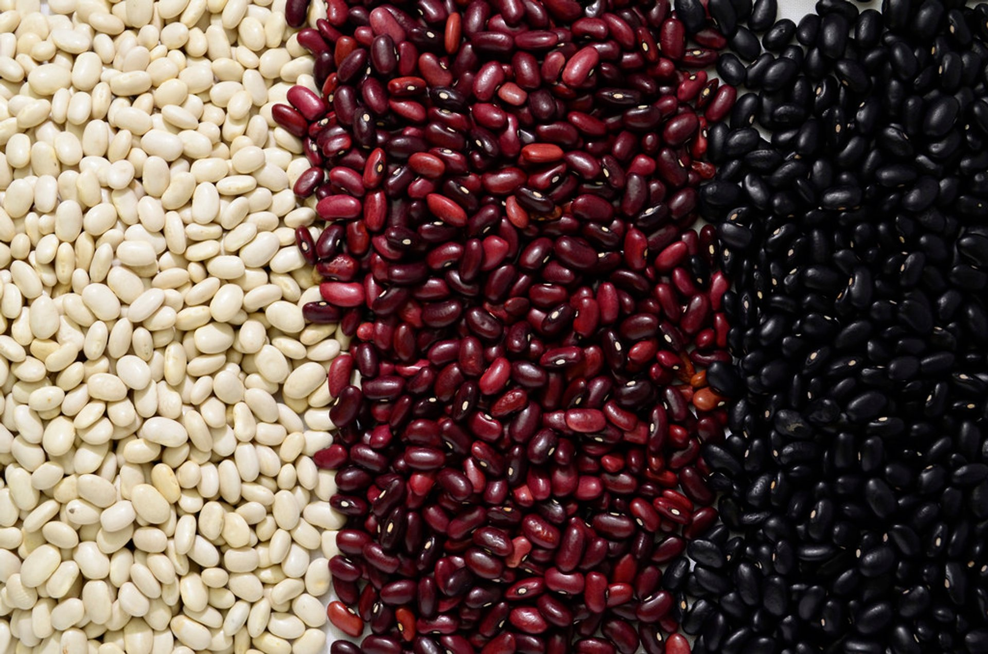 Black Beans or Frijoles Negros in Guatemala - Best Season 2020