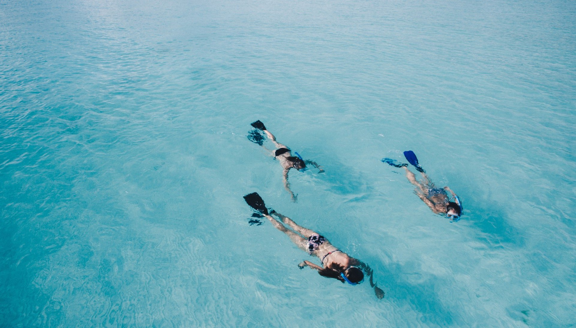 Scuba Diving & Snorkeling in Maldives 2020 - Best Time