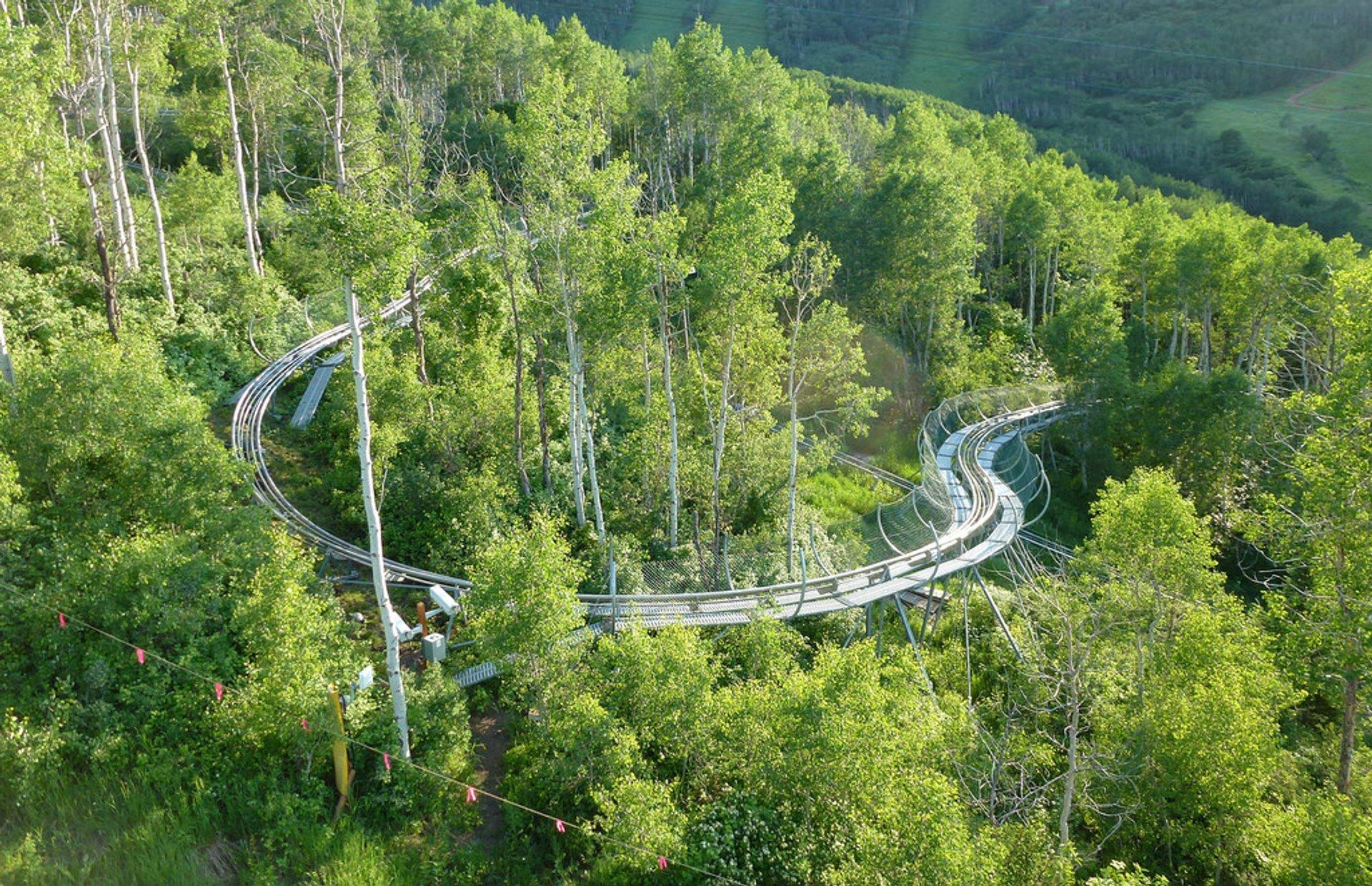 Alpine Coaster in Utah 2020 - Best Time