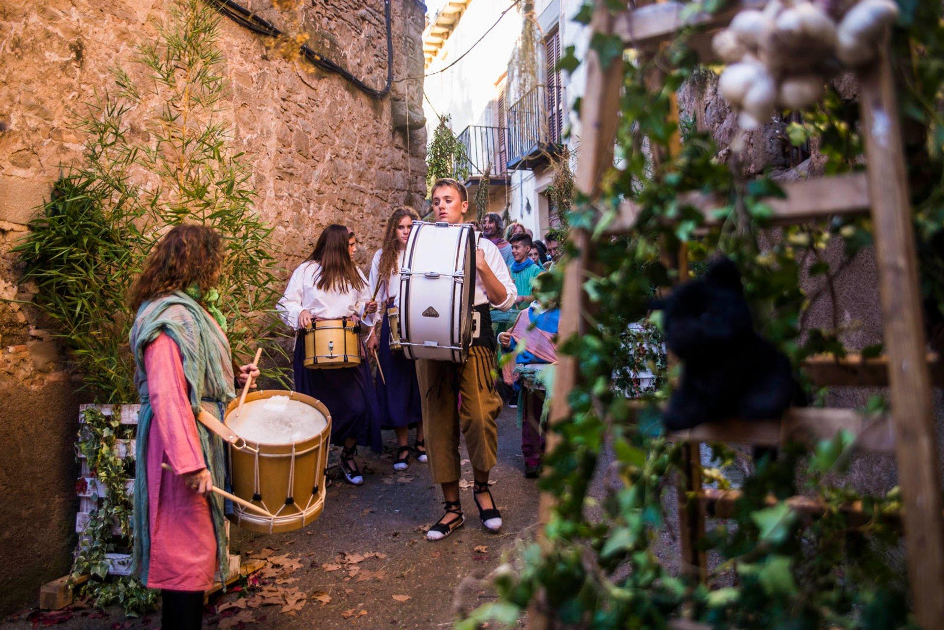 Fira de les Bruixes in Sant Feliu Sasserra 2020