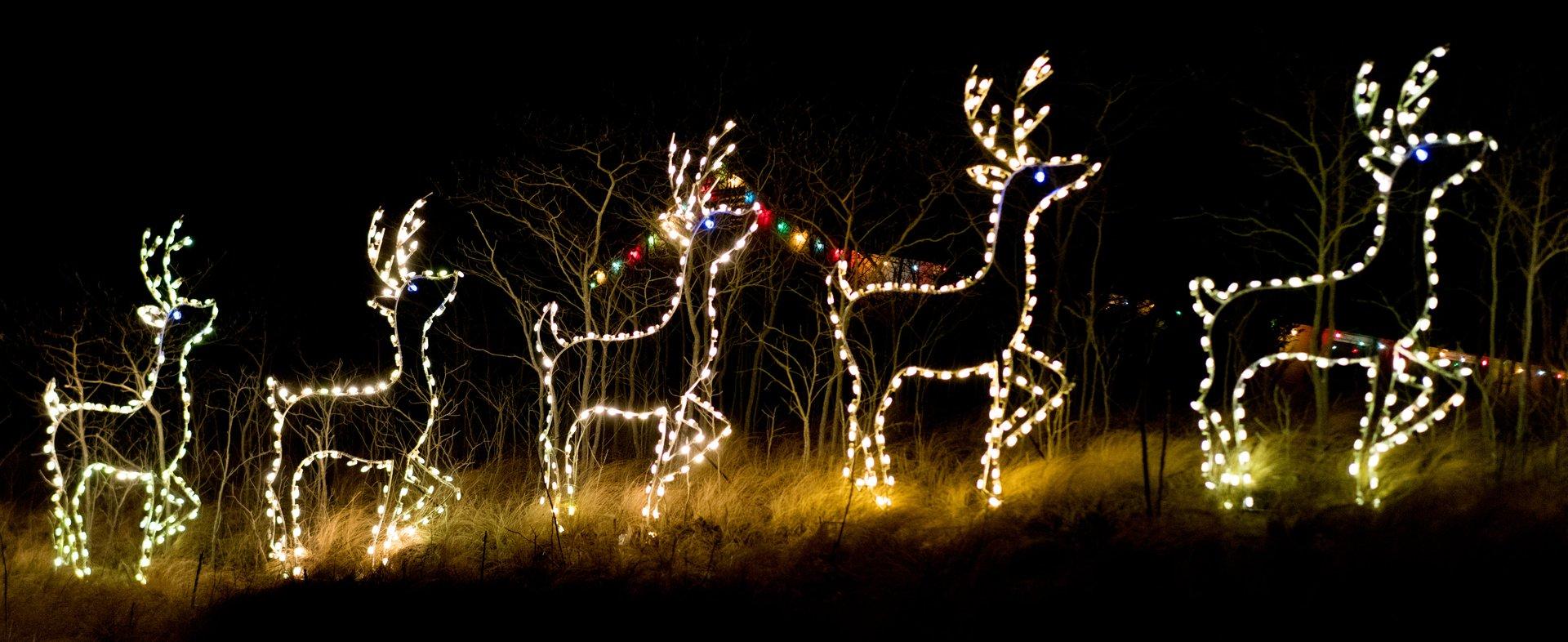 Christmas Lights in Delaware 2020 - Best Time