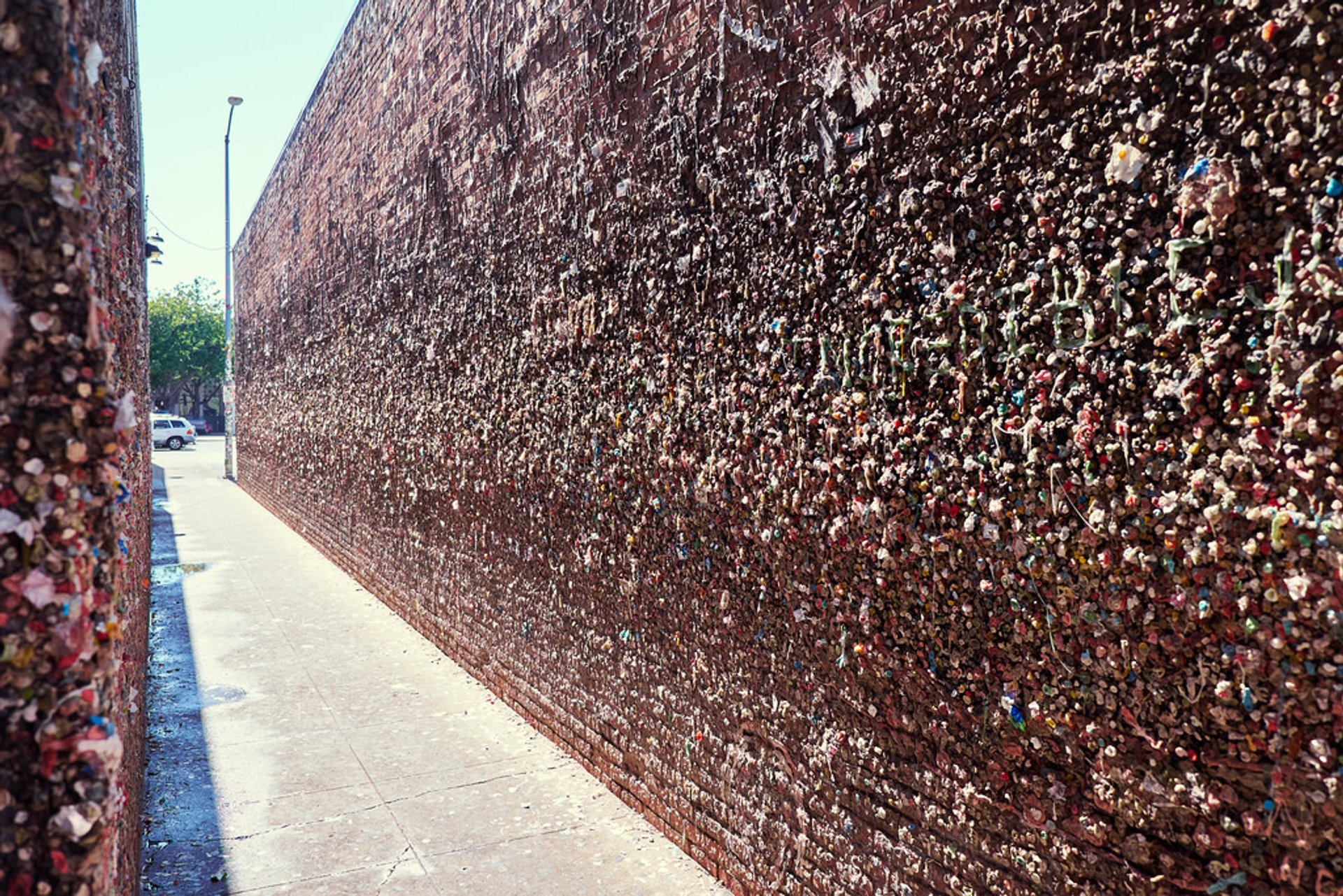 Best time to see Bubblegum Alley in California 2020