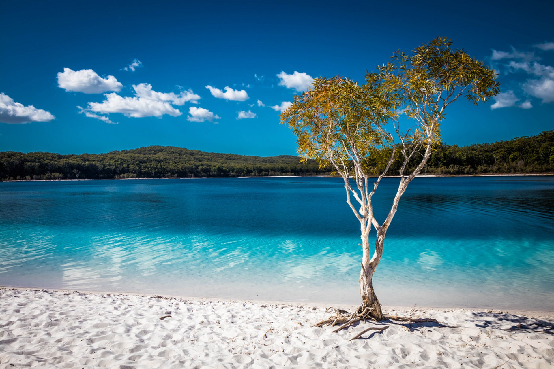 Lake McKenzie (Boorangoora) in Australia - Best Time