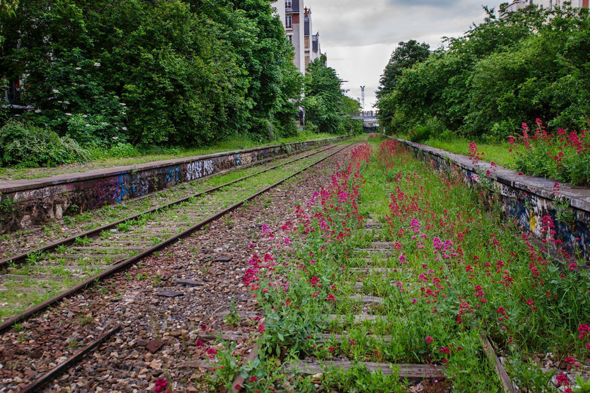 Abandoned Railway Abloom in Paris - Best Season 2020