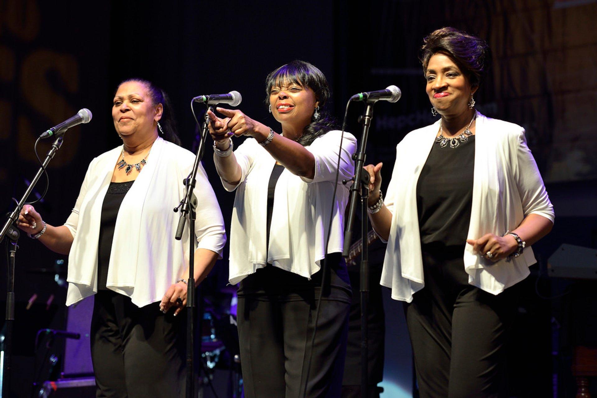 Syl Johnson's Chorus Girls 2020