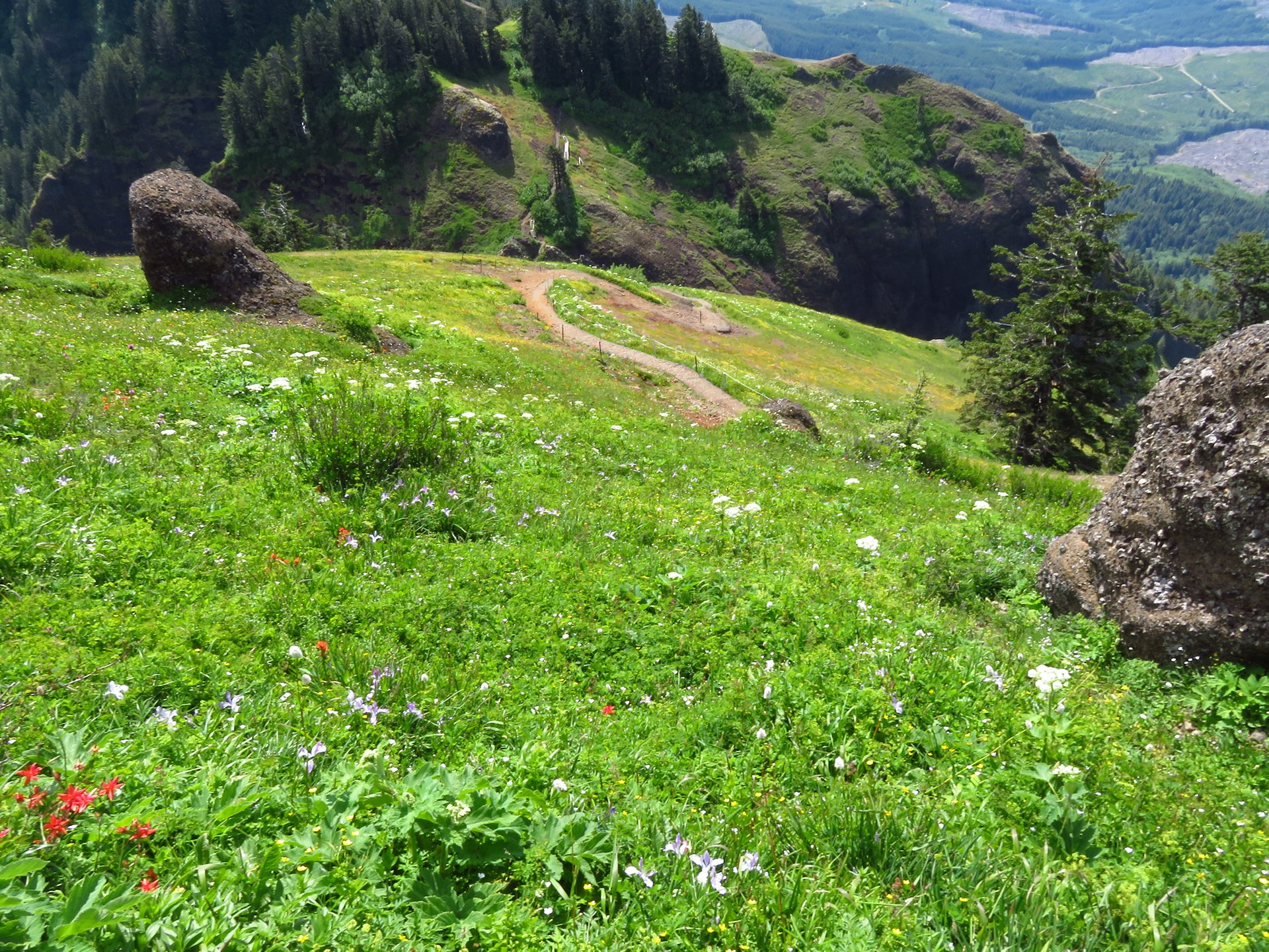Saddle Mountain in Oregon - Best Season 2020