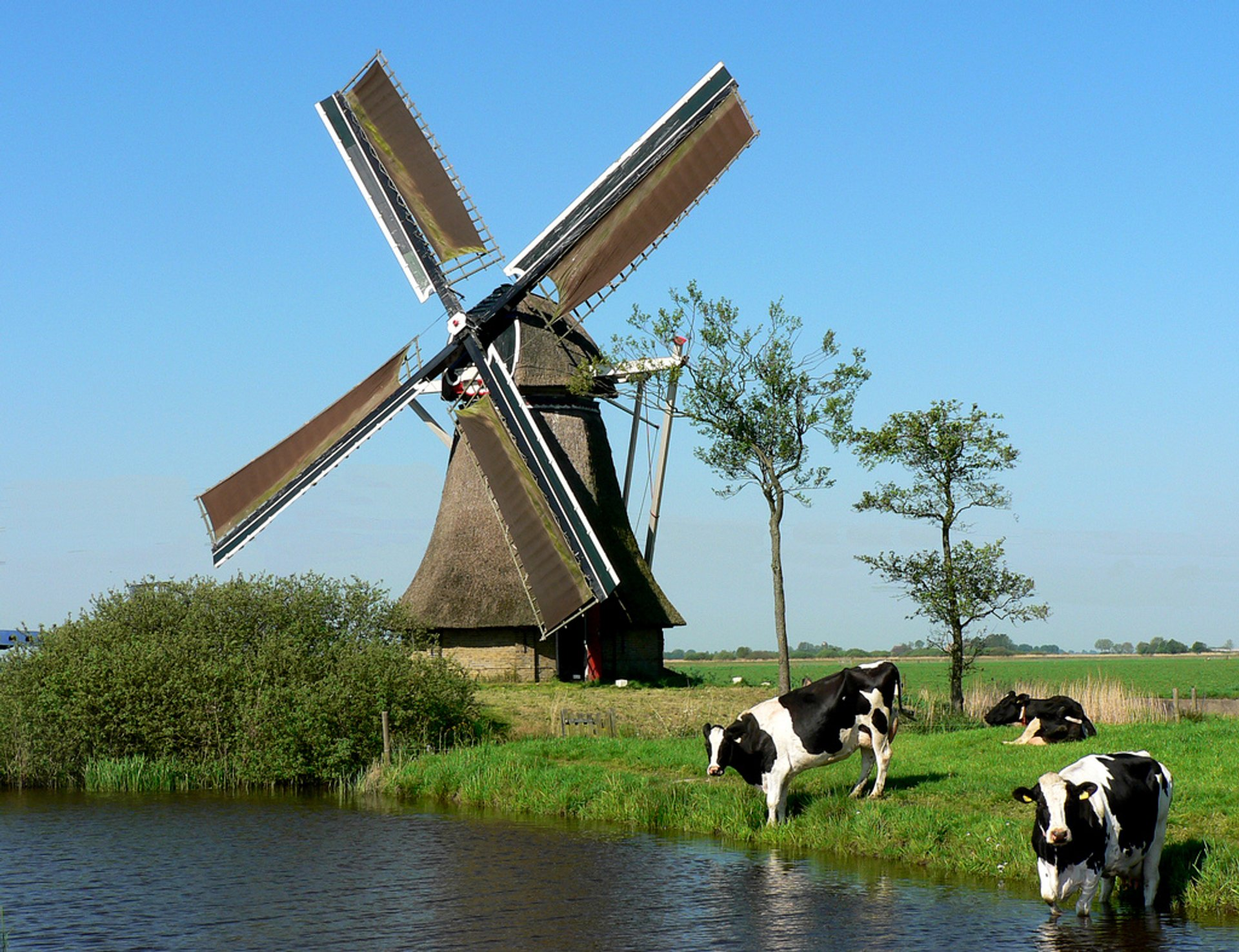 National Mill Day in The Netherlands 2019 - Best Time