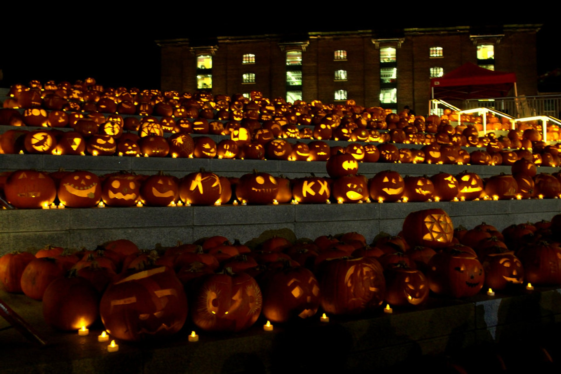 The King's Cross pumpkins by night 2020