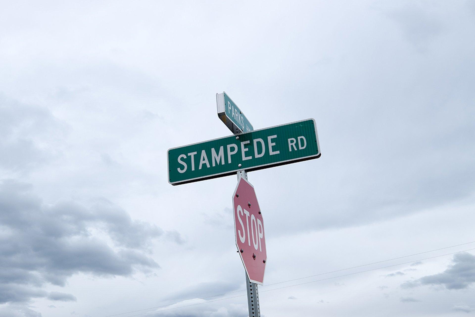 Stampede Trail and Bus 142 in Alaska - Best Season 2020