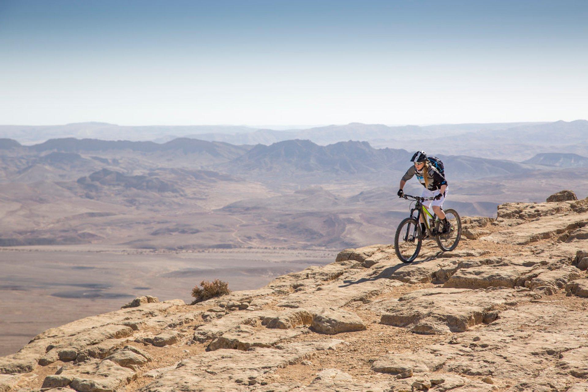 Biking the Desert in Israel 2019 - Best Time