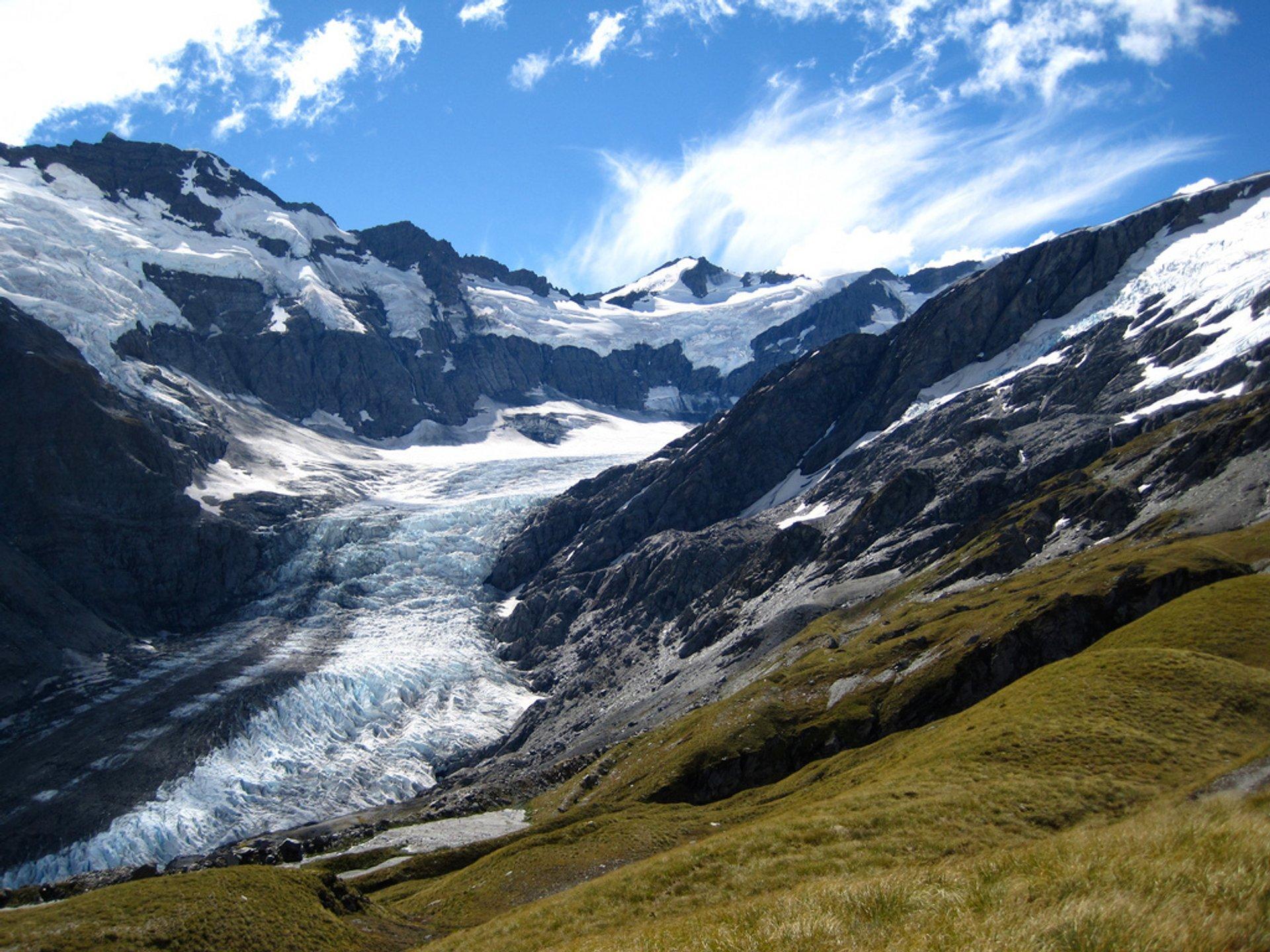 Dart Glacier 2019