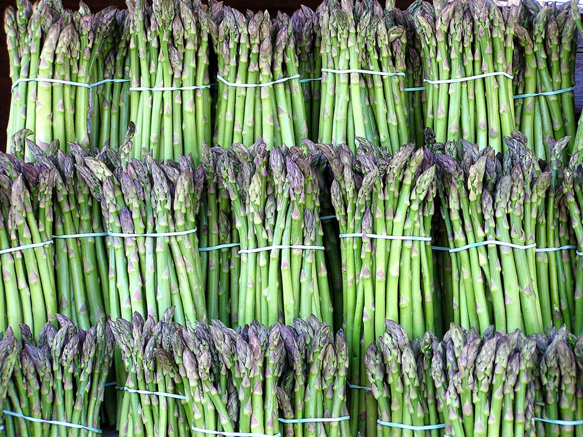 Asparagus Season in England 2020 - Best Time