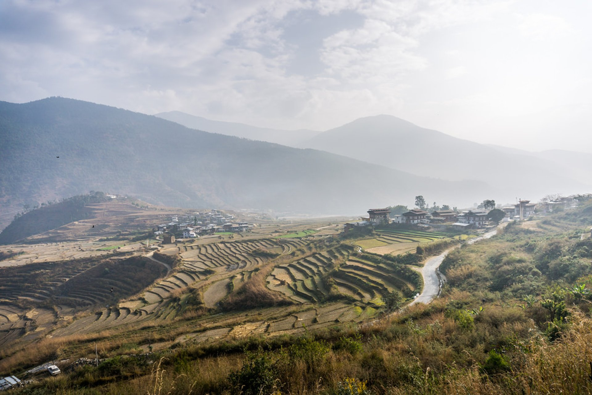 Rice Harvest in Bhutan 2019 - Best Time