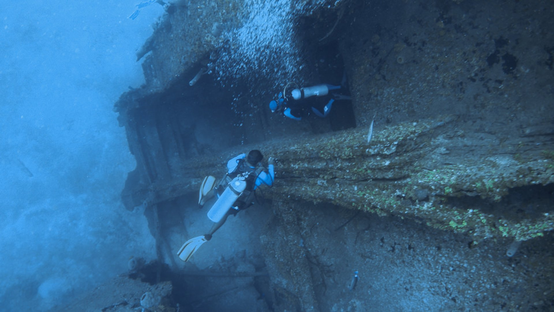 Diving around Roatan Island 2019