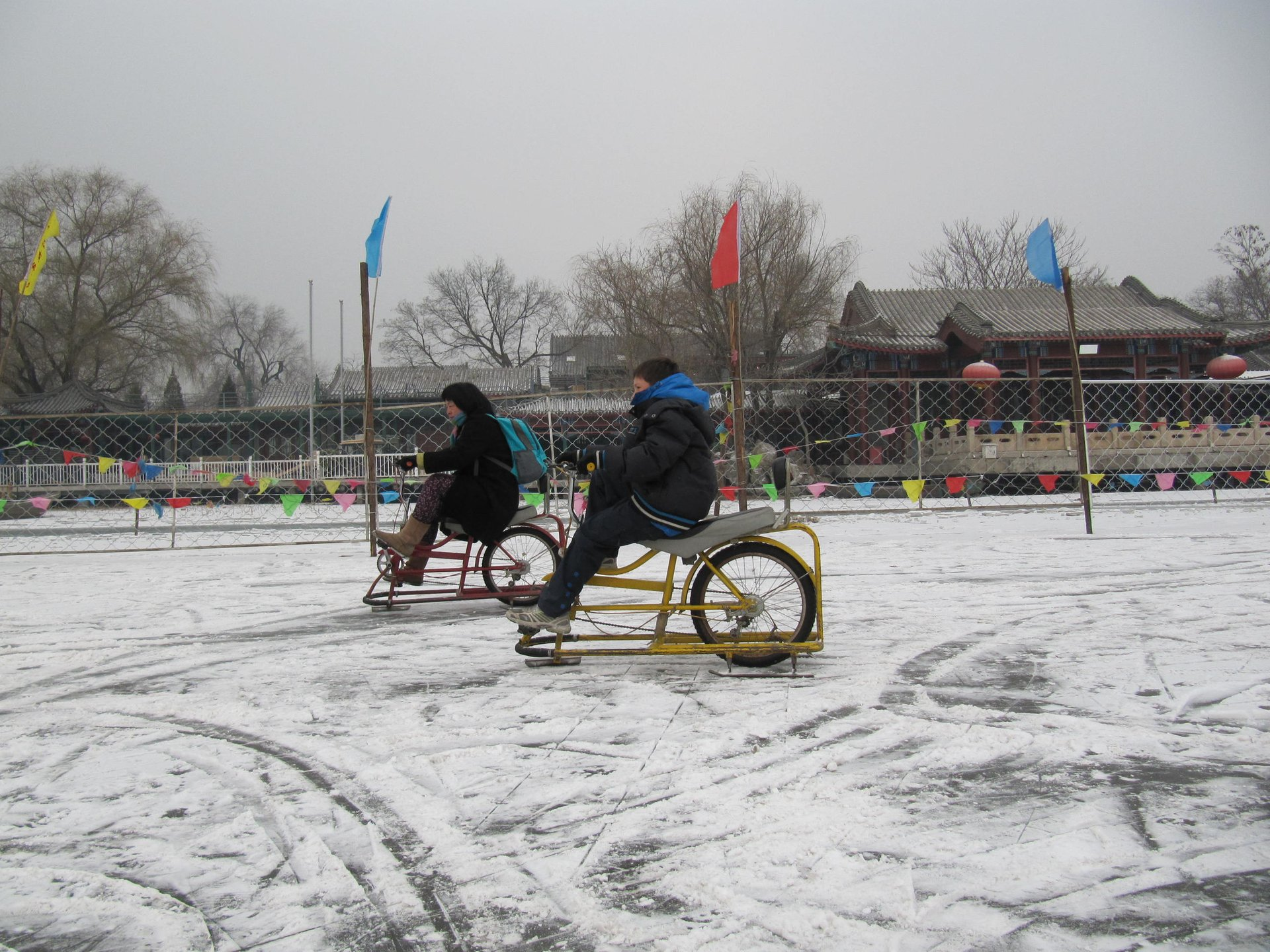 Ice bicycles in Beihei Park 2020