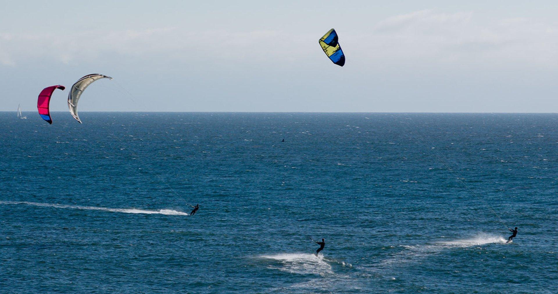 Lighthouse Field State Beach, Santa Cruz, California 2020