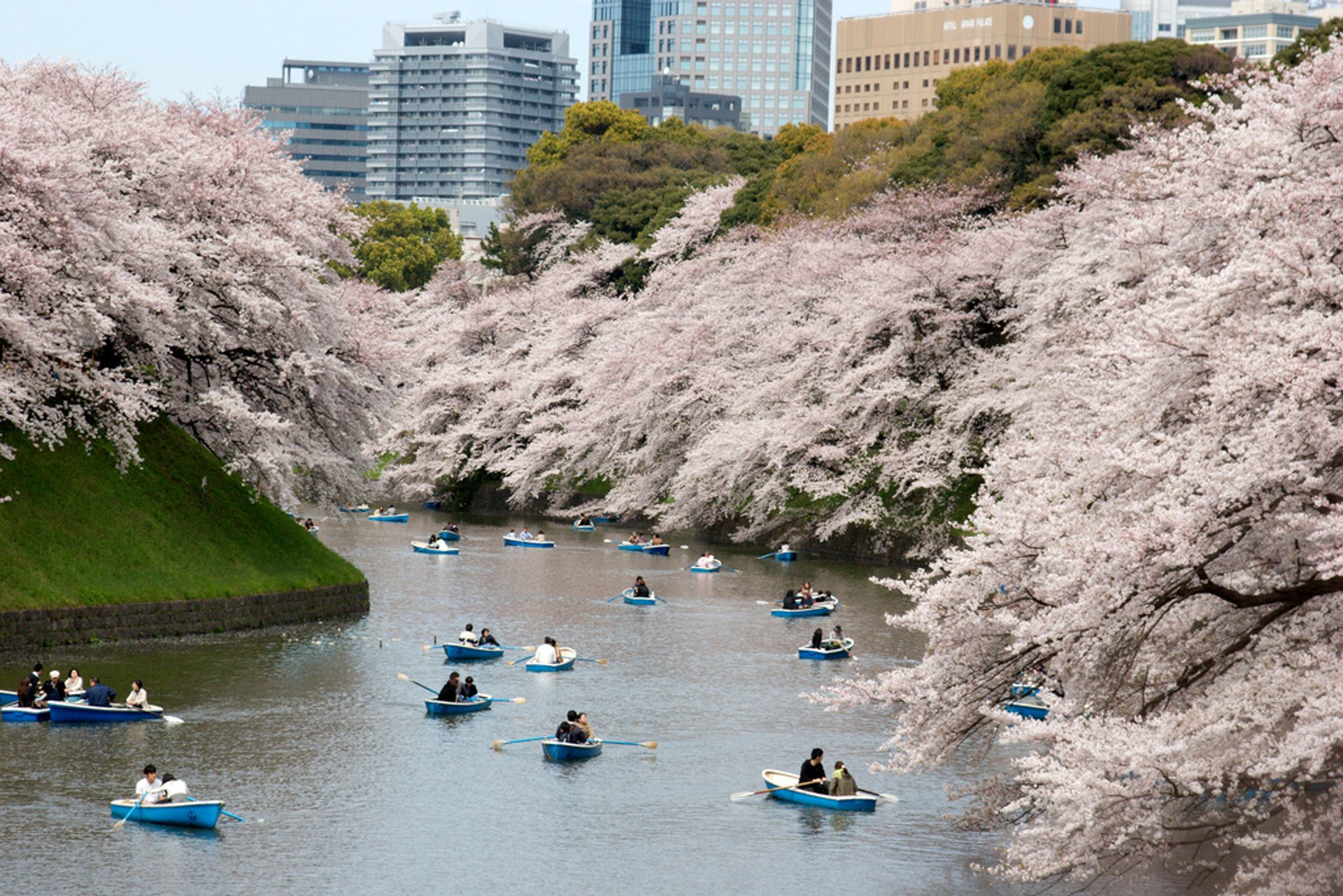 Chidorigafuchi Green Way near the Imperial Palace in Tokyo 2020