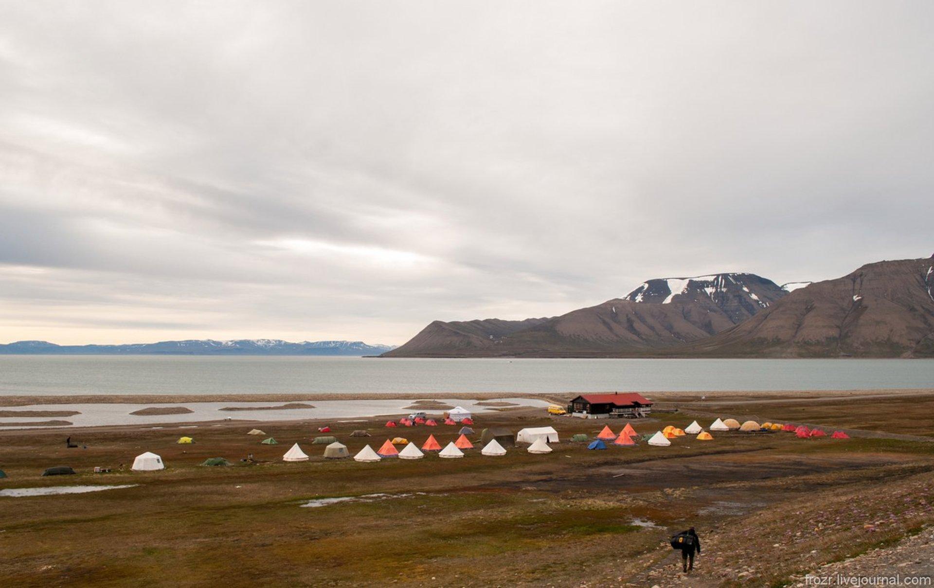 Longyearbyen Camping in Svalbard 2020 - Best Time