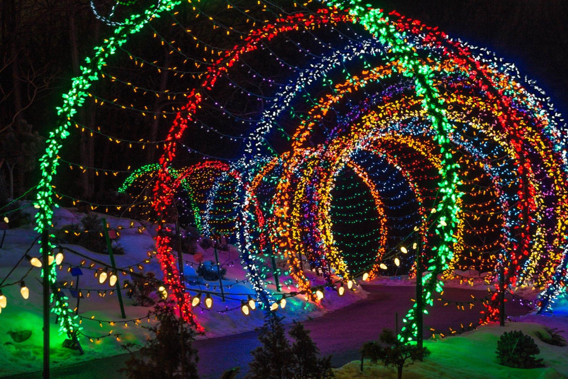 Best time for Garden of Lights at Green Bay Botanical Garden 2020