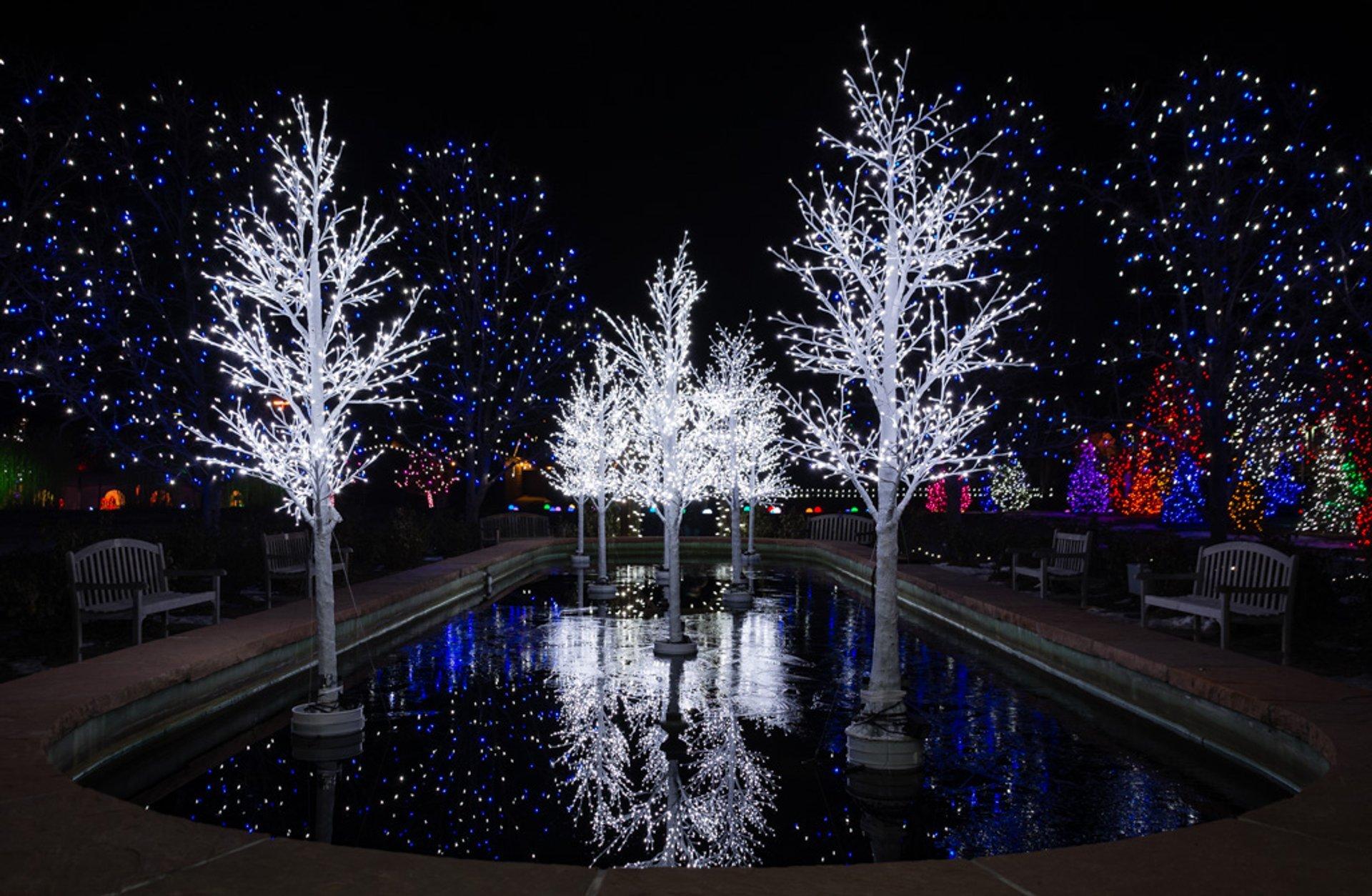 A Hudson Christmas in Denver 2020 - Best Time