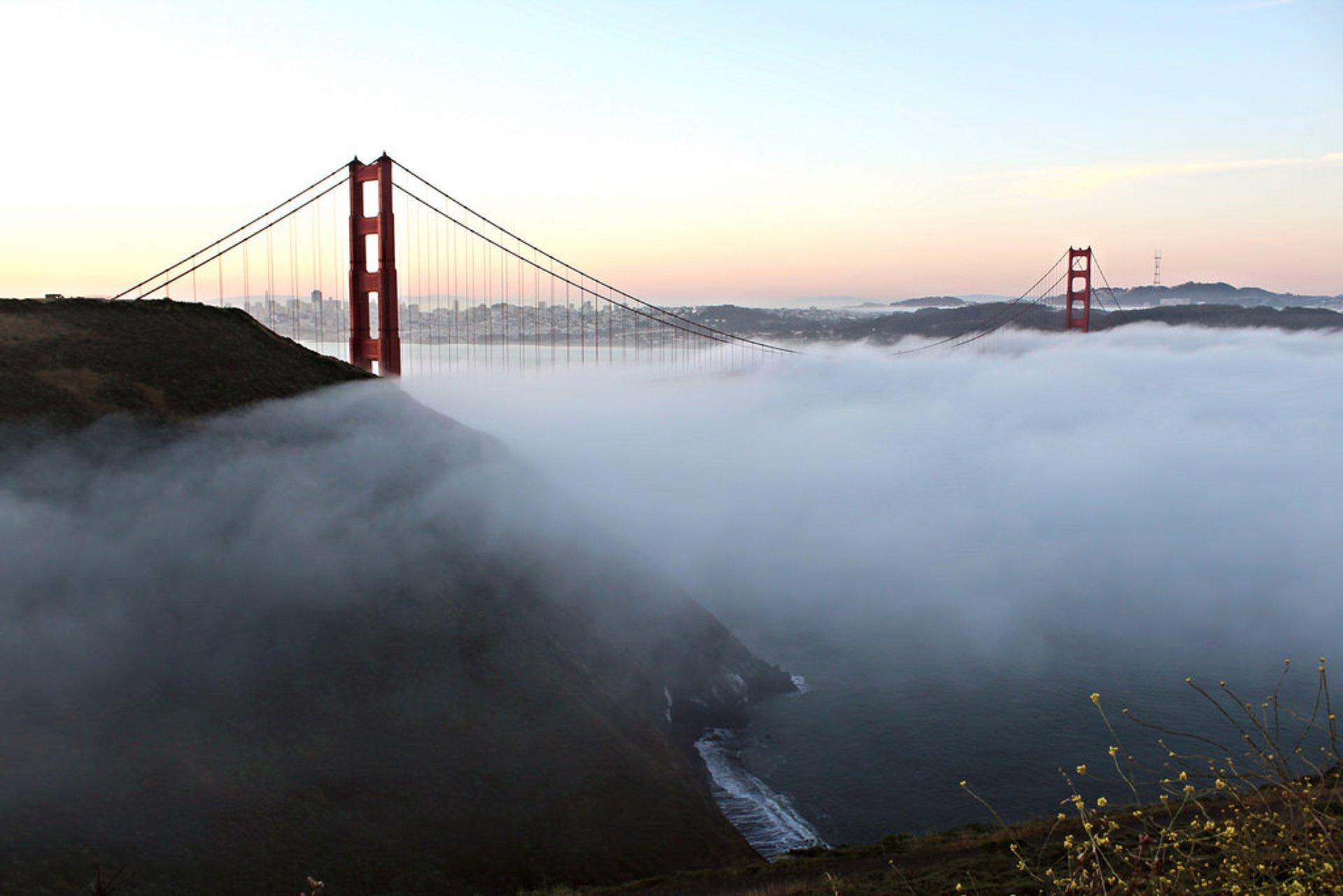 Fogs in San Francisco - Best Season 2020