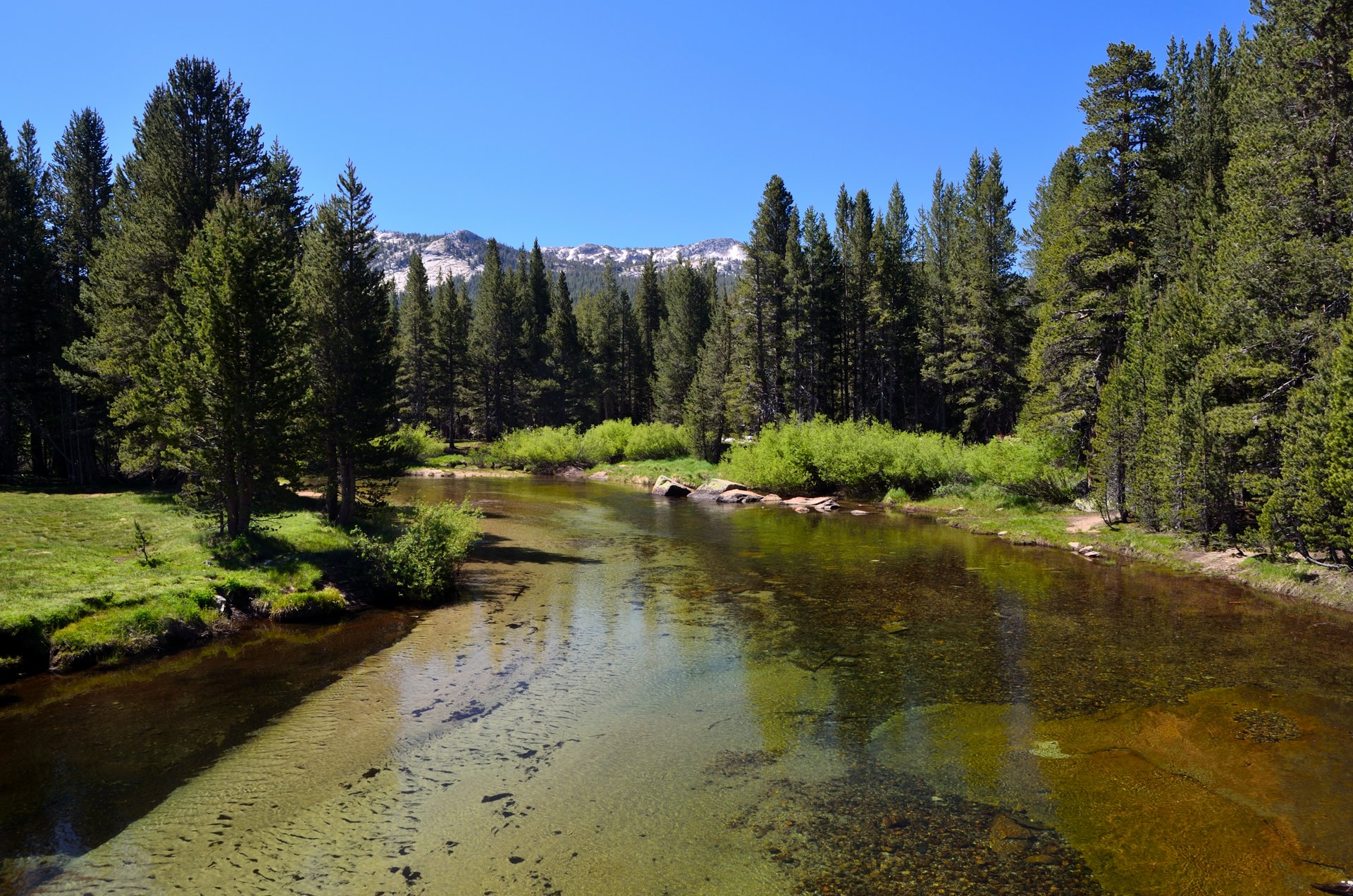 Best time for Tuolumne Meadows in Yosemite 2020