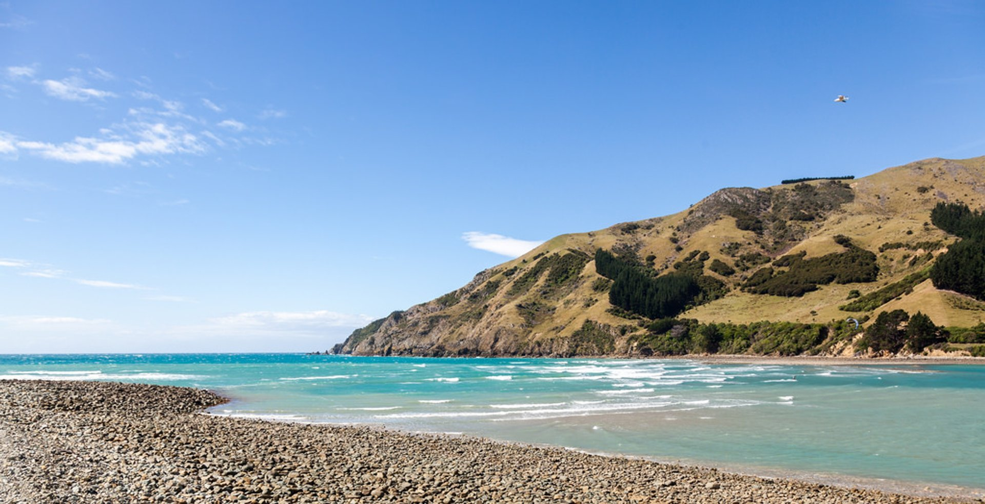Summer in New Zealand - Best Season