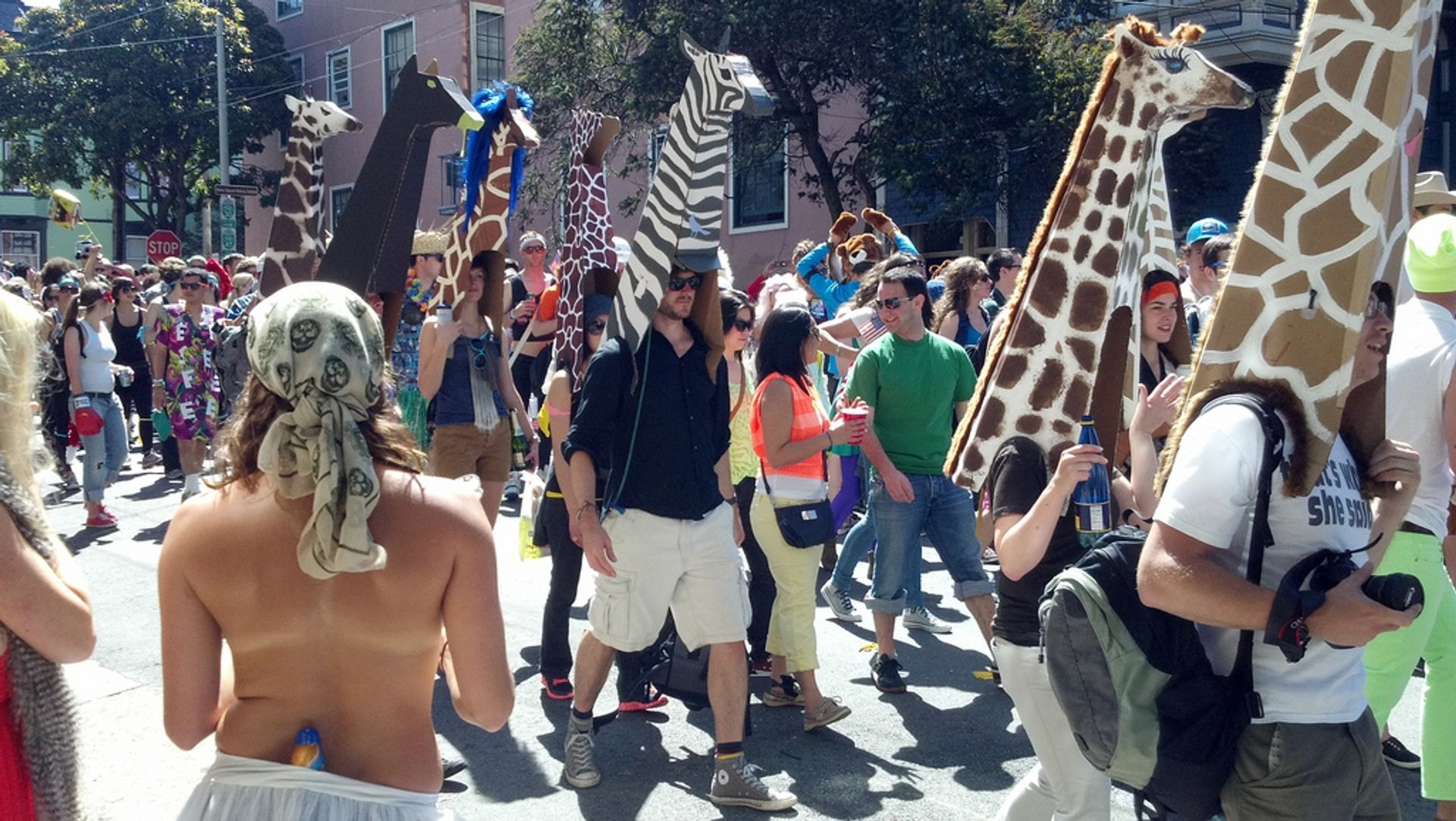 Bay to Breakers in San Francisco - Best Season 2020