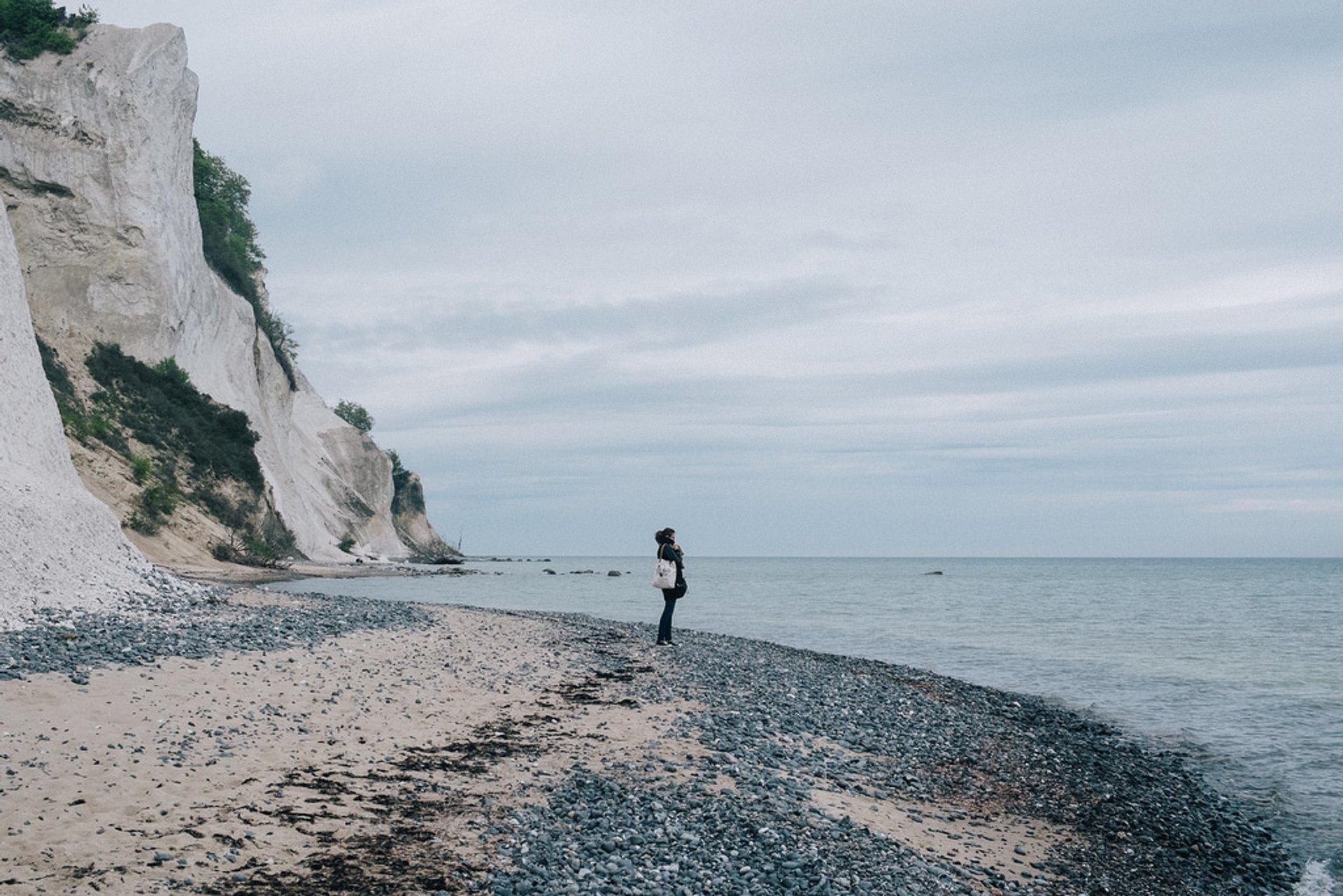 White Cliffs of Møns Klint in Denmark - Best Season 2020