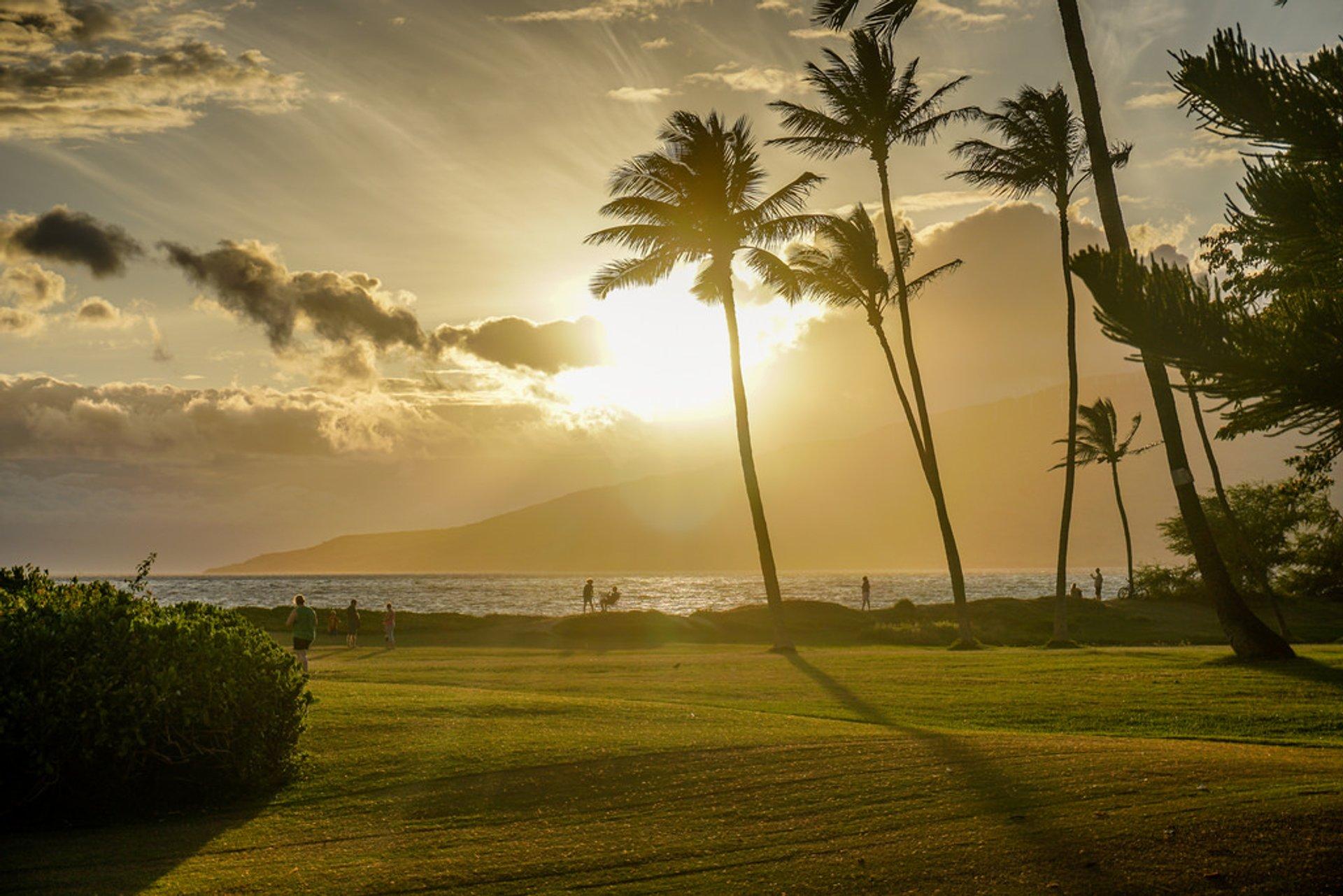 Summer (Dry Season) in Hawaii 2020 - Best Time