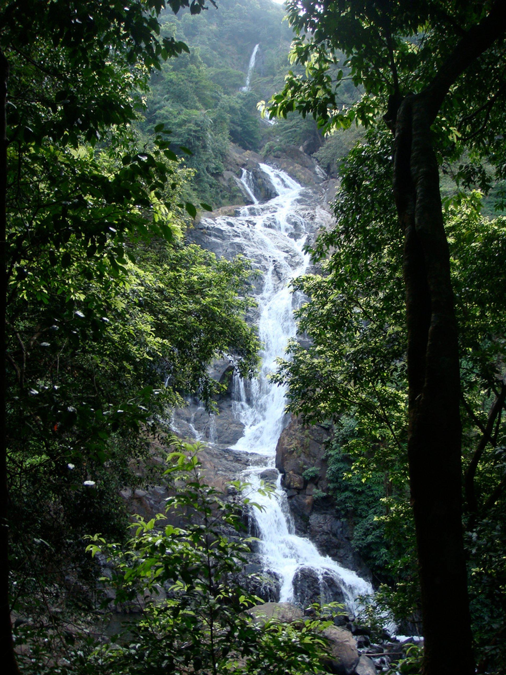 Tambdi Falls 2020