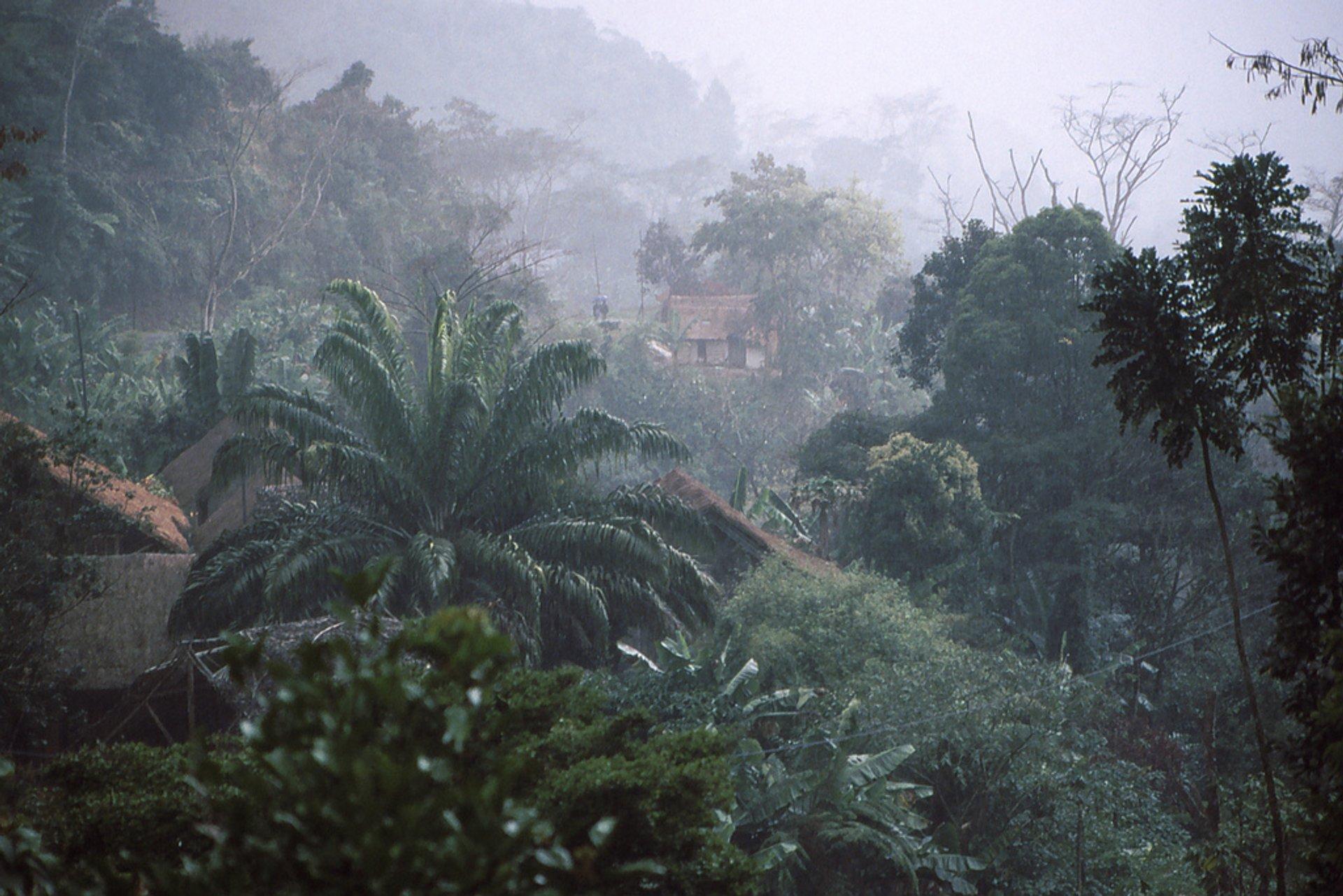 Rainy Season in Madagascar 2020 - Best Time
