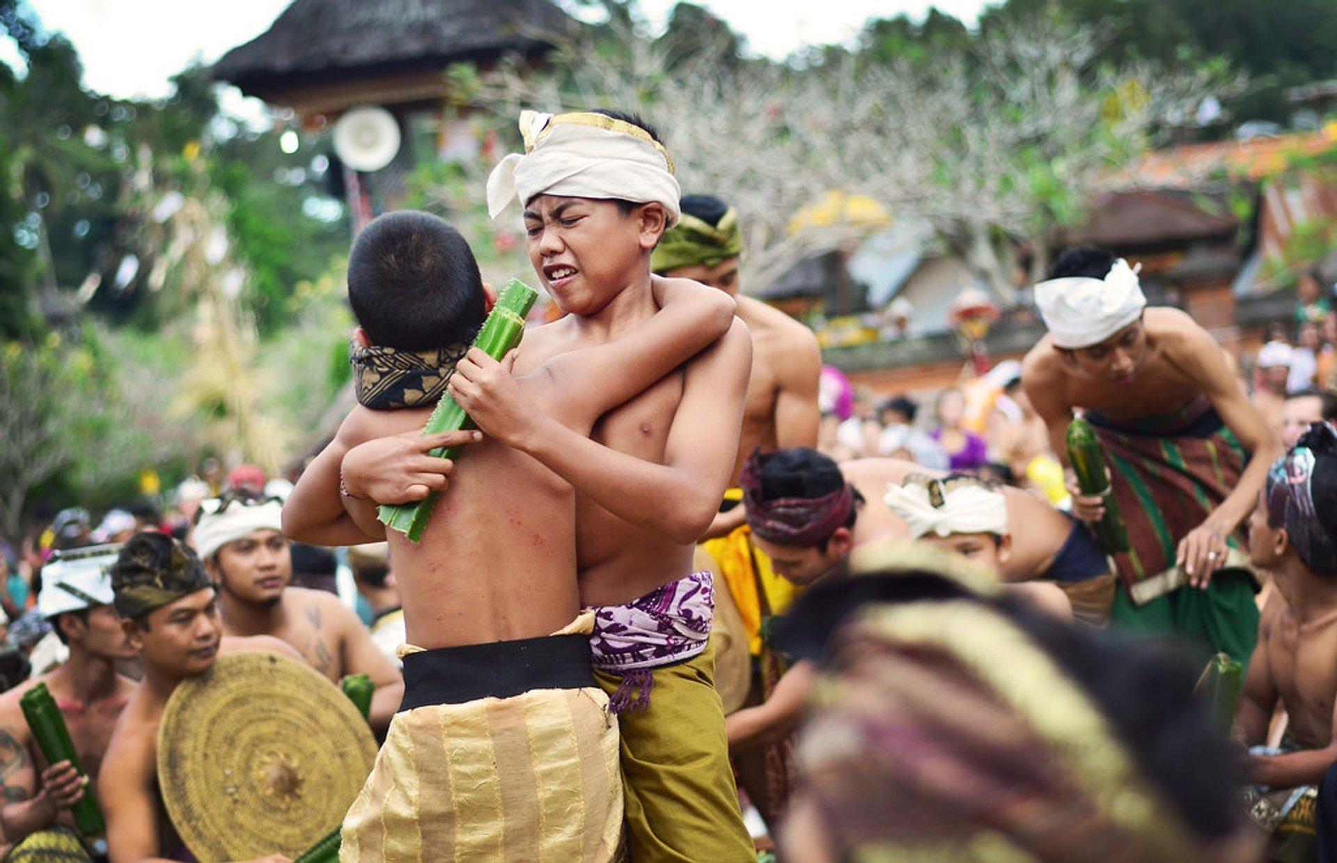 Makare-Kare or Pandan War in Bali 2020 - Best Time
