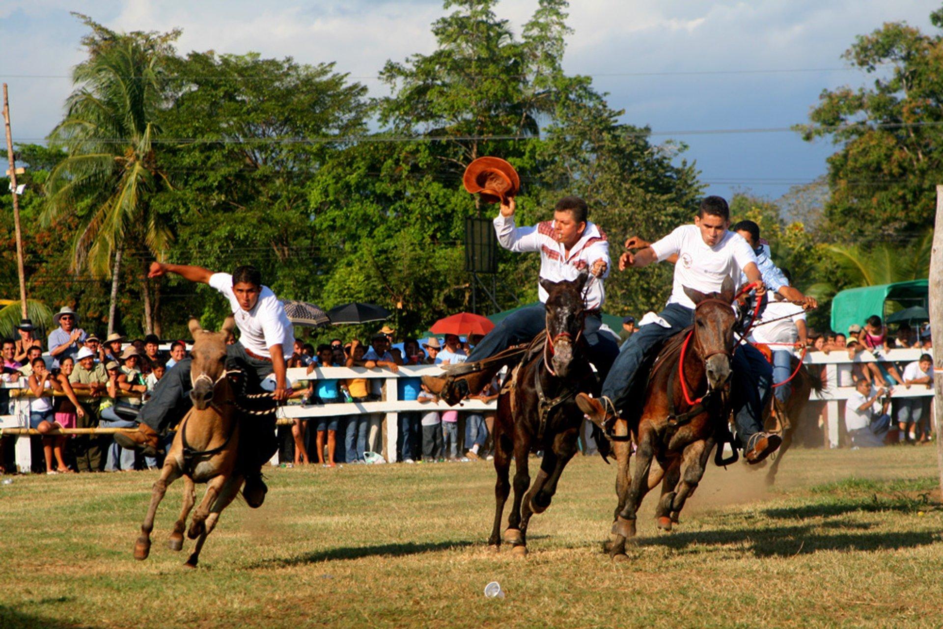 Best time for Parrita Mule Festival in Costa Rica 2020