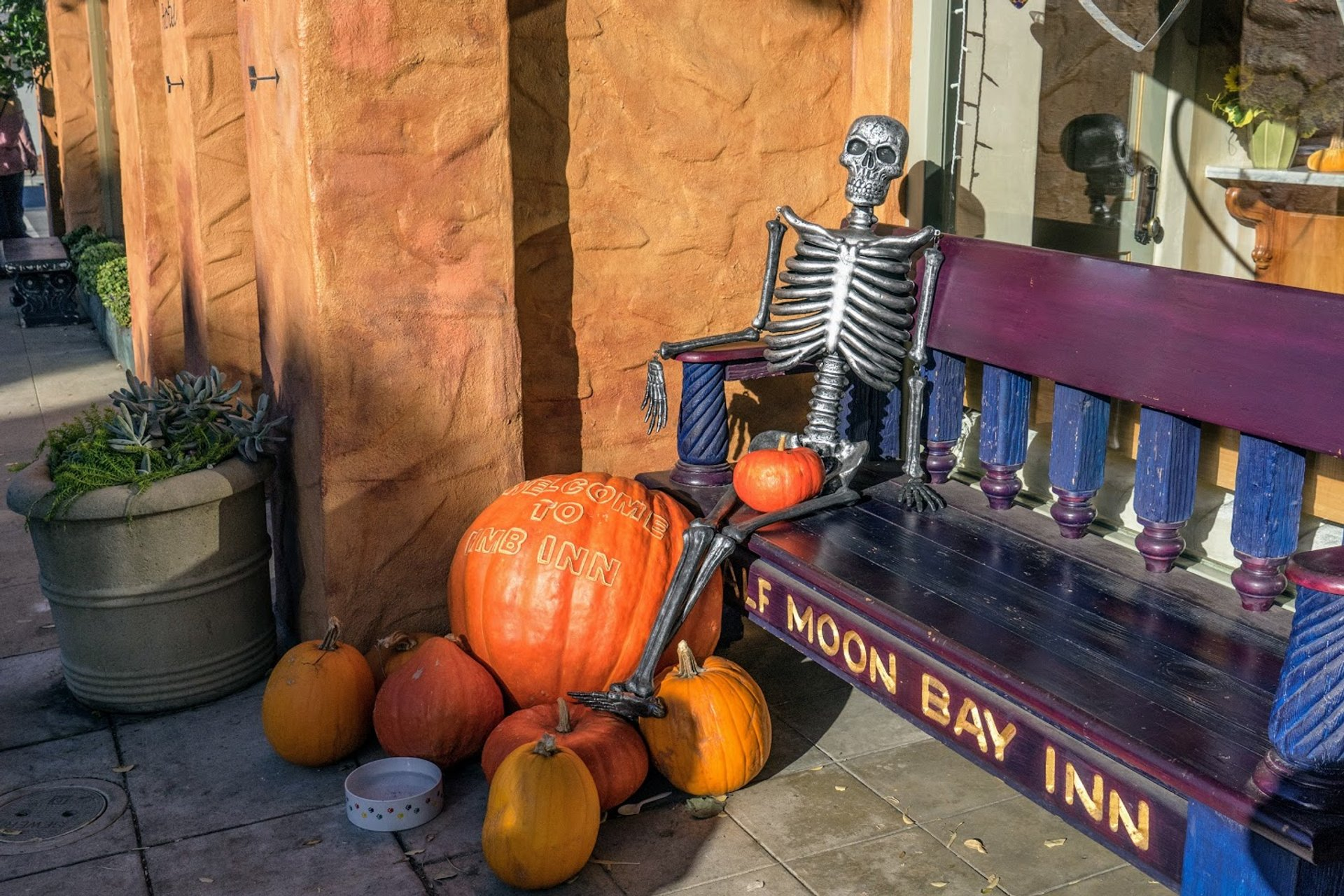 Half Moon Bay Pumpkin Festival in San Francisco - Best Season 2020