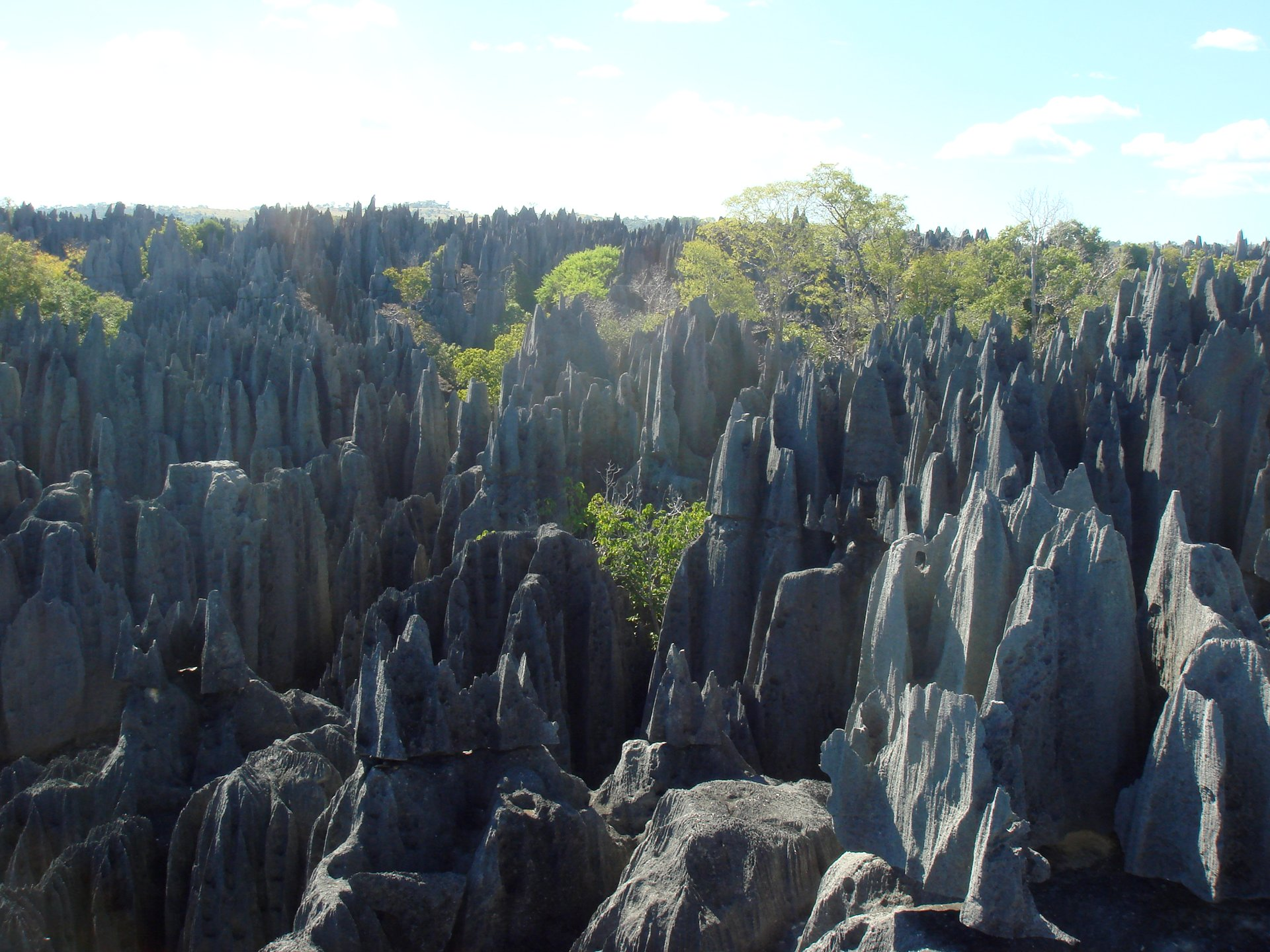 Stone Forest Tsingy de Bemaraha in Madagascar - Best Season 2020