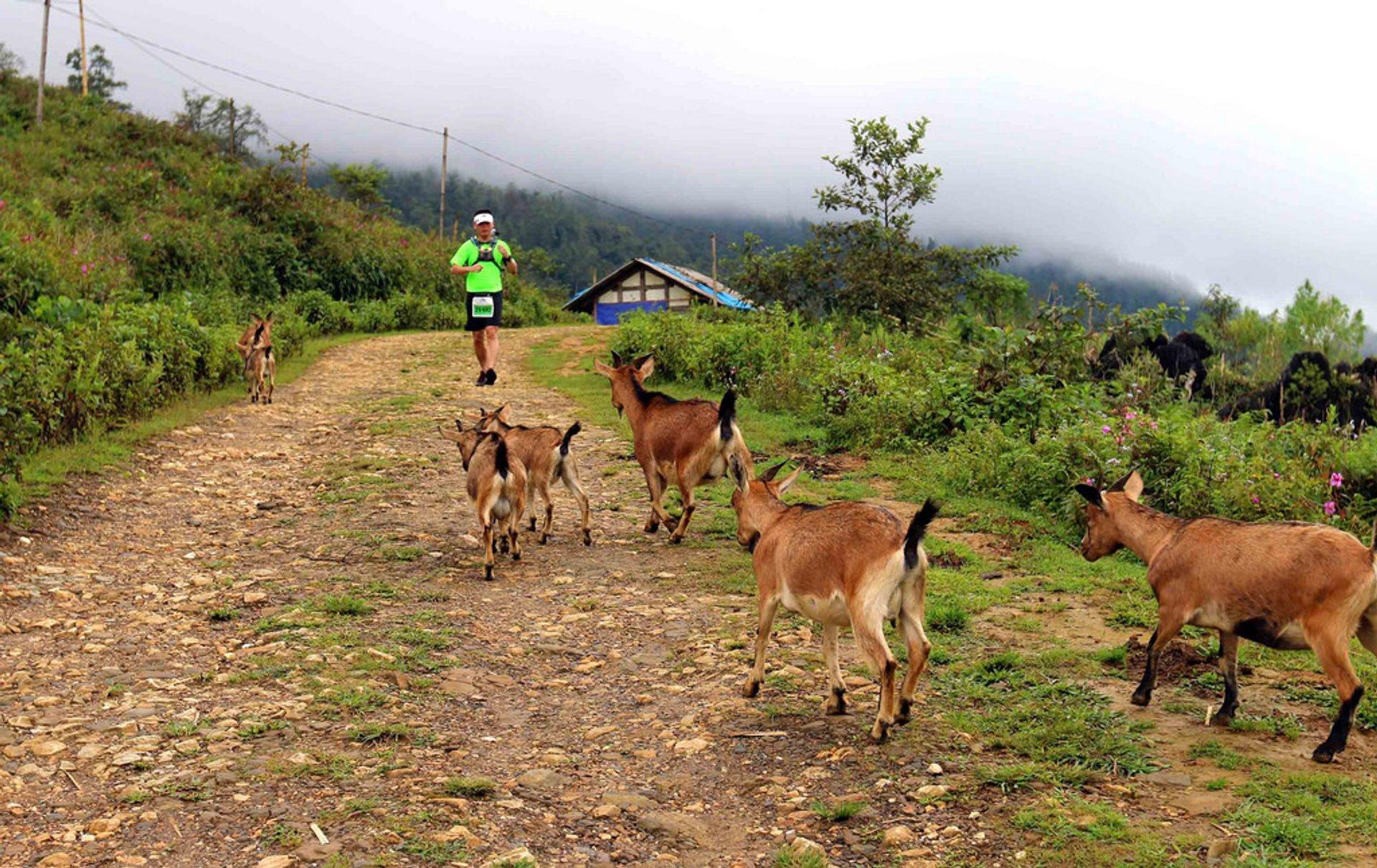 Vietnam Mountain Marathon in Vietnam - Best Season 2020