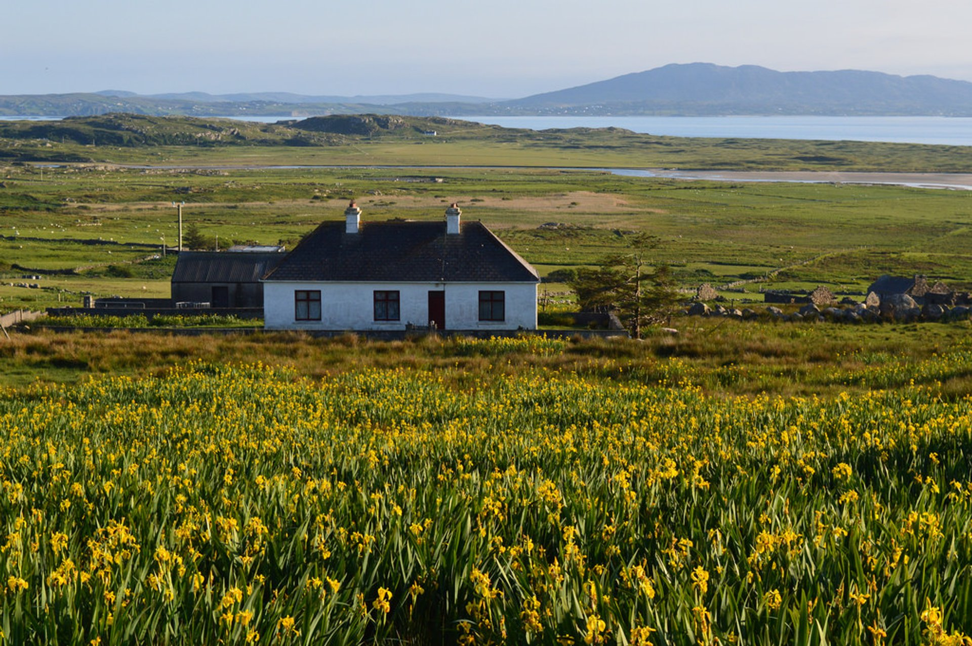 Spring in Ireland 2020 - Best Time