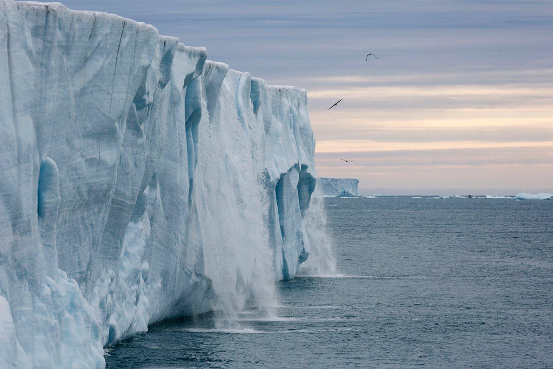 Bråsvellbreen Glacier 2020