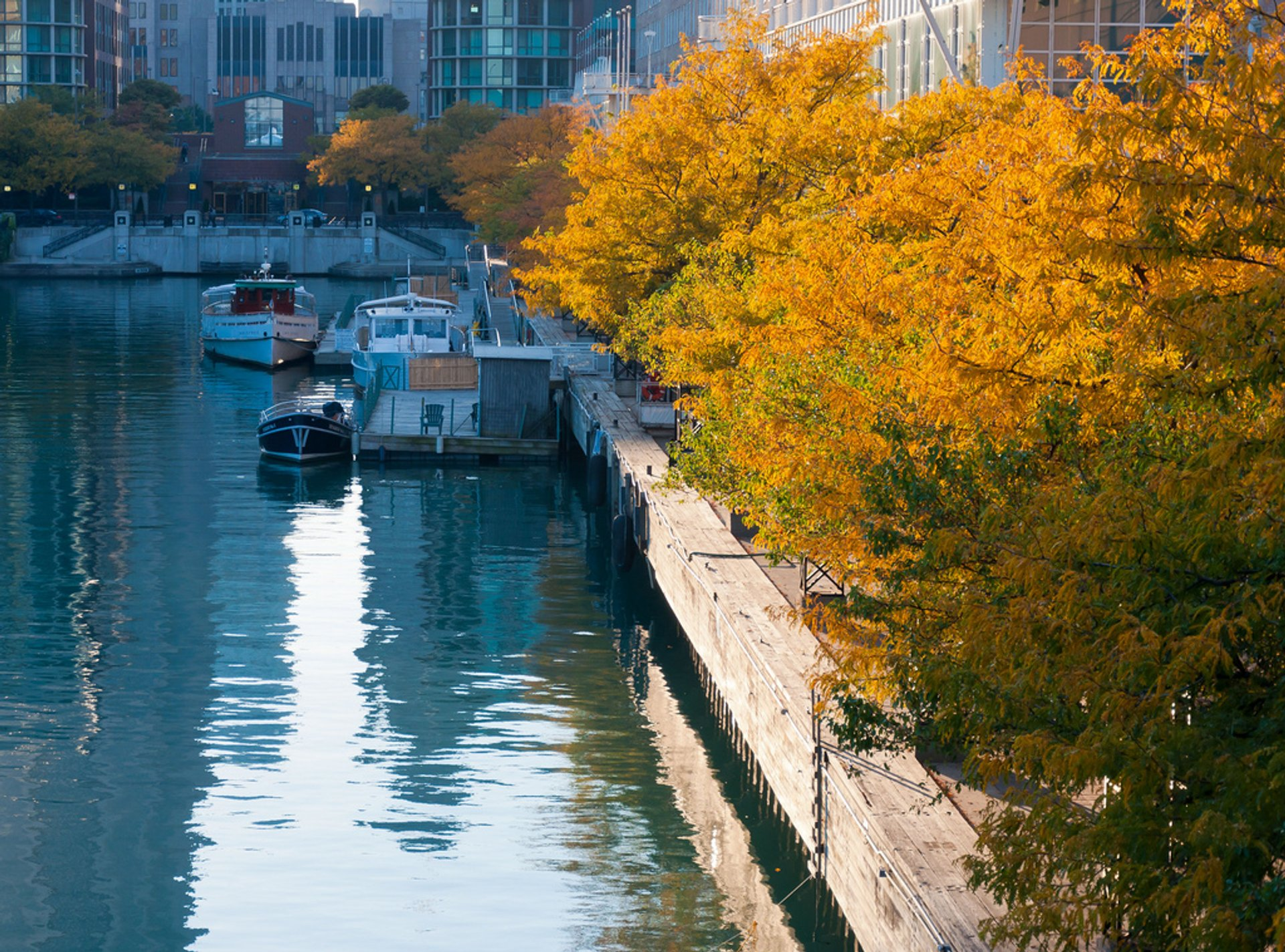 Autumn in Chicago - Best Season