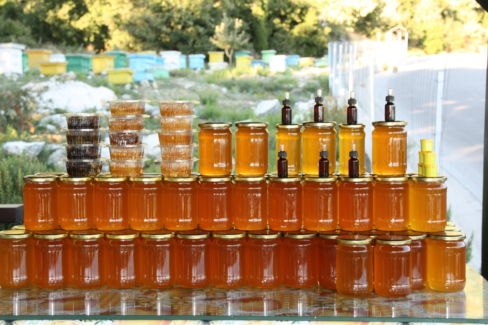 Honey Harvest in Albania 2019 - Best Time