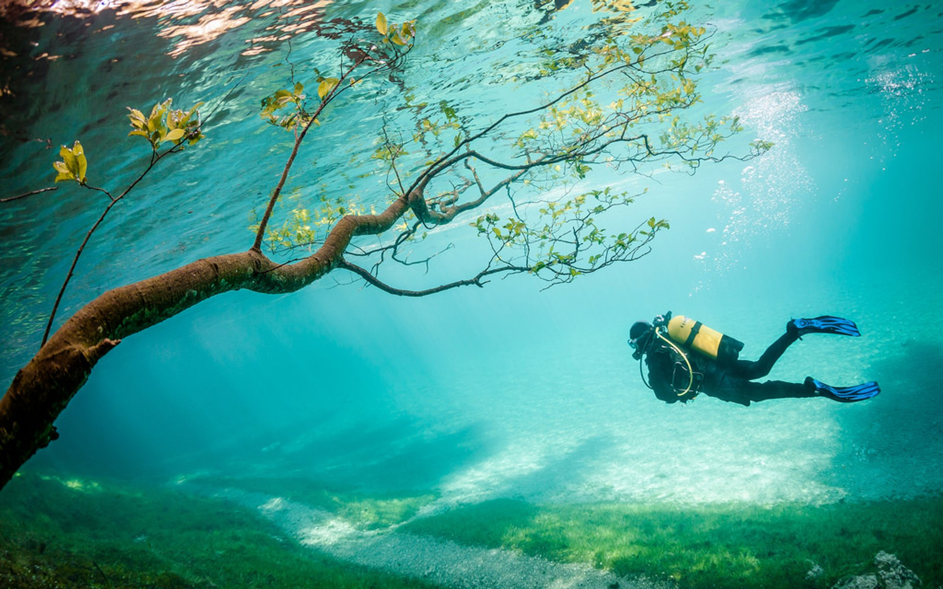 Best time to see Green Lake Park in Austria 2019
