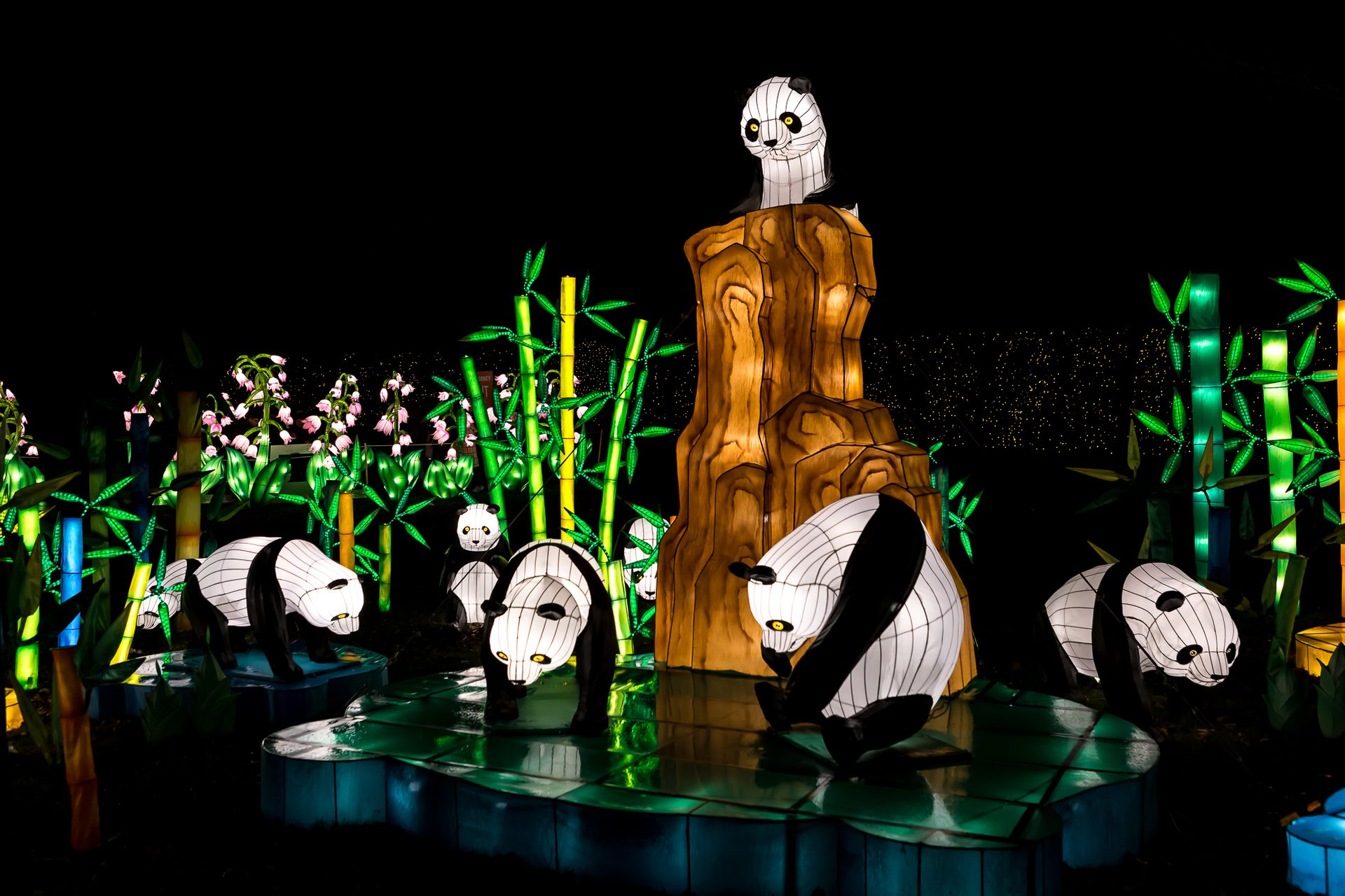 NYC Winter Lantern Festival in New York 2020 - Best Time