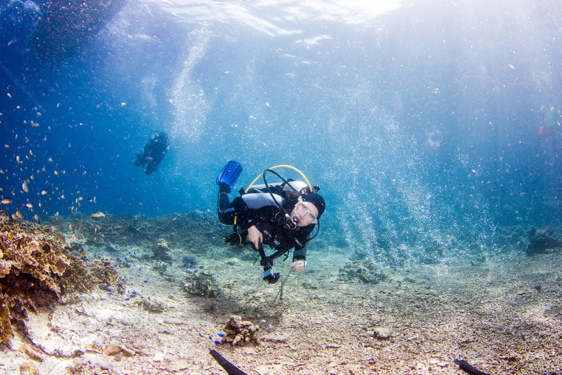 Snorkelling and Scuba Diving in Philippines 2020 - Best Time