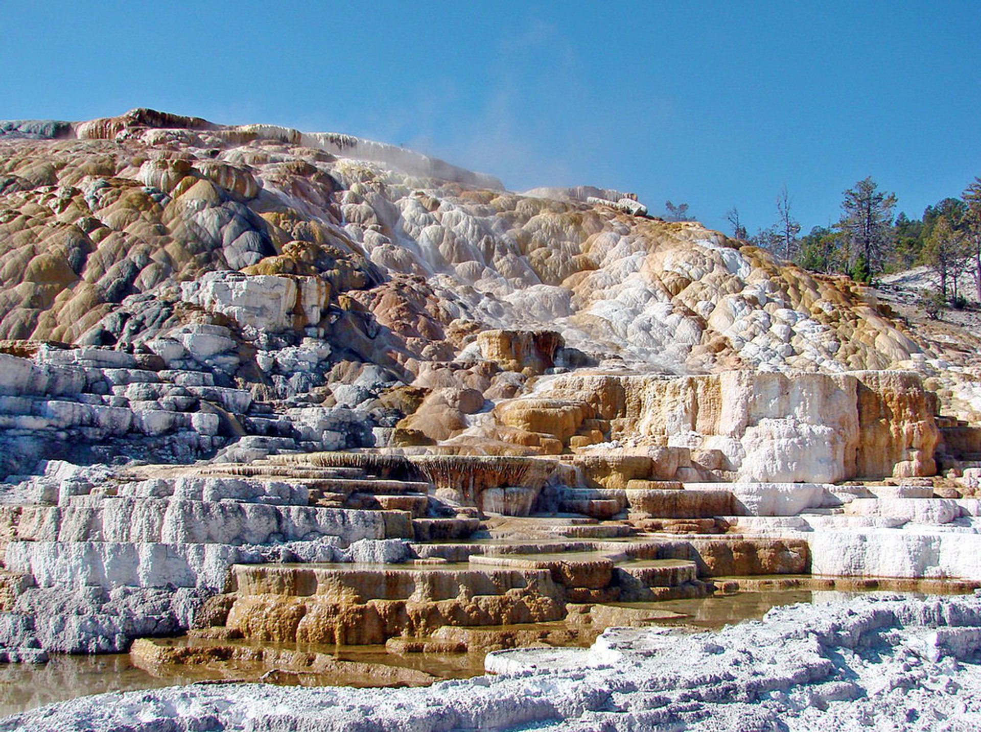 Mammoth Hot Springs in Yellowstone National Park - Best Season 2019