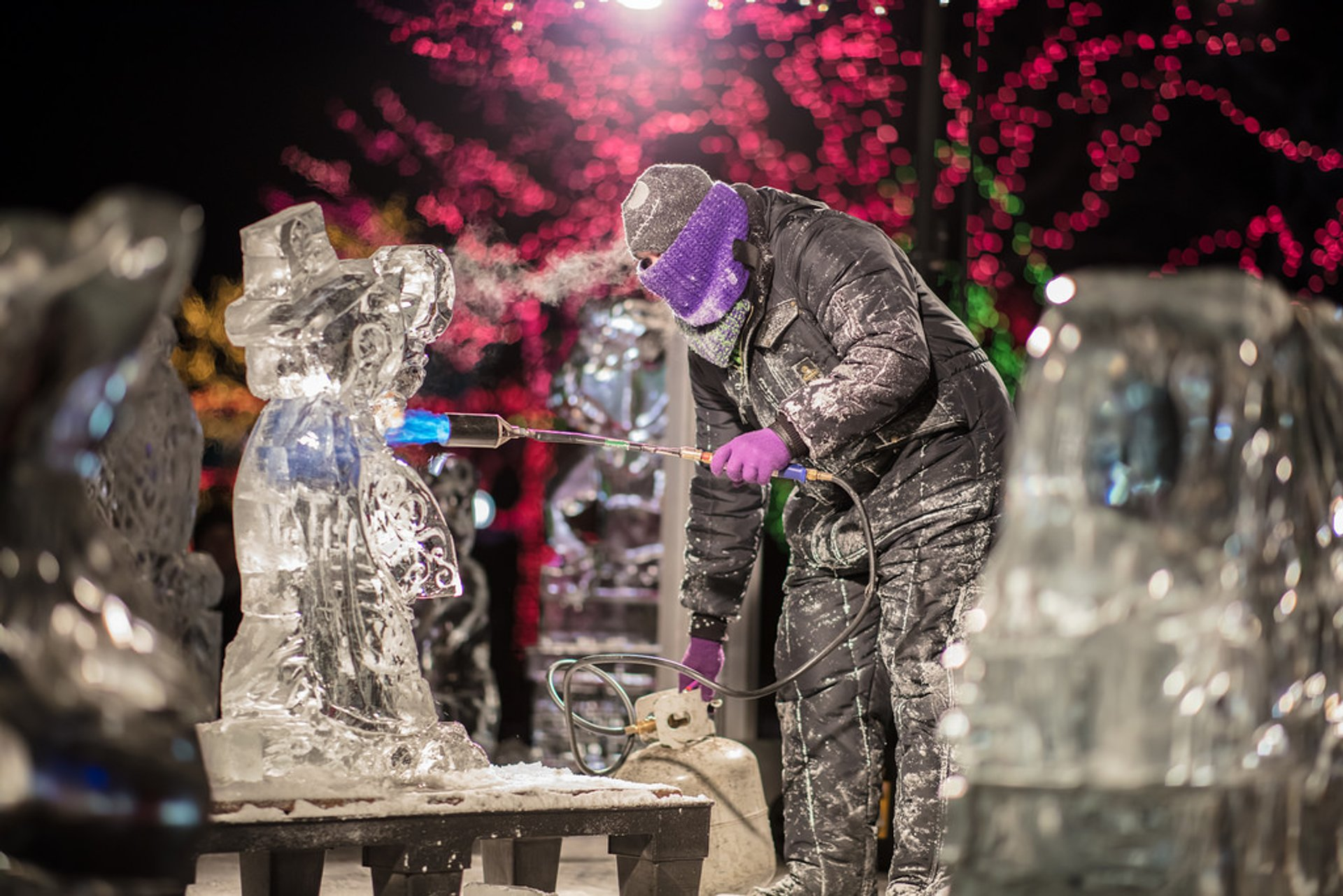 Zoolights Ice Sculptures Show in Lincoln Park Zoo 2020